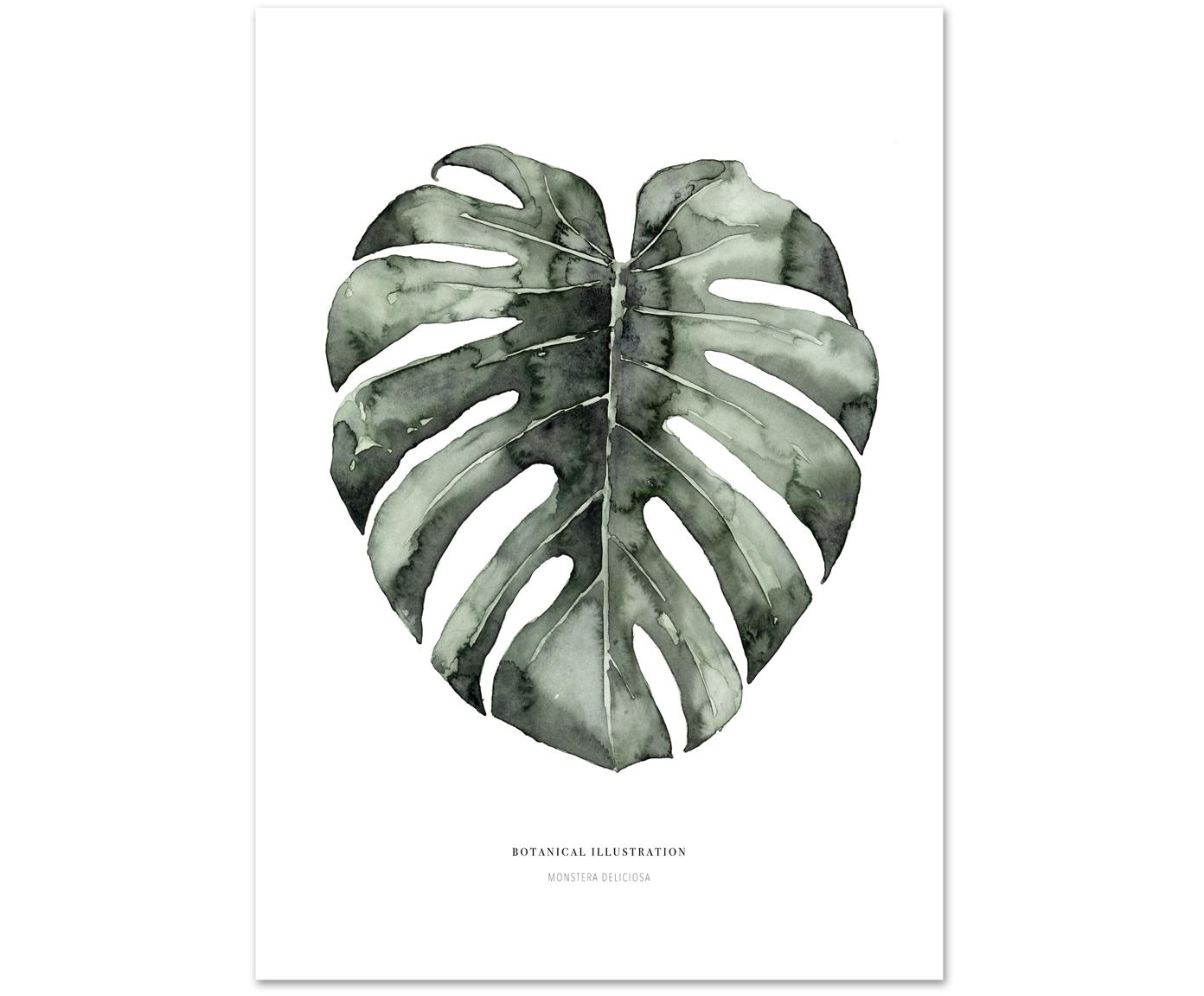 Poster Urban Monstera, Stampa digitale su carta, 200 g/m², Bianco, verde, Larg. 21 x Alt. 30 cm