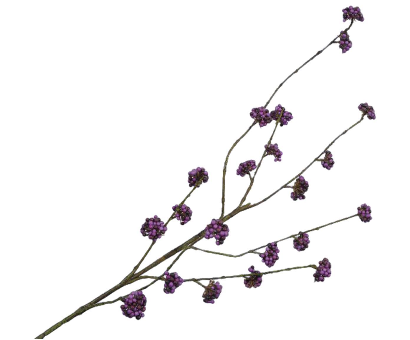 Fiore artificiale callicarpa Cecilia, Materiale sintetico, metallo, schiuma, Viola, verde, Larg. 15 x Lung. 94 cm