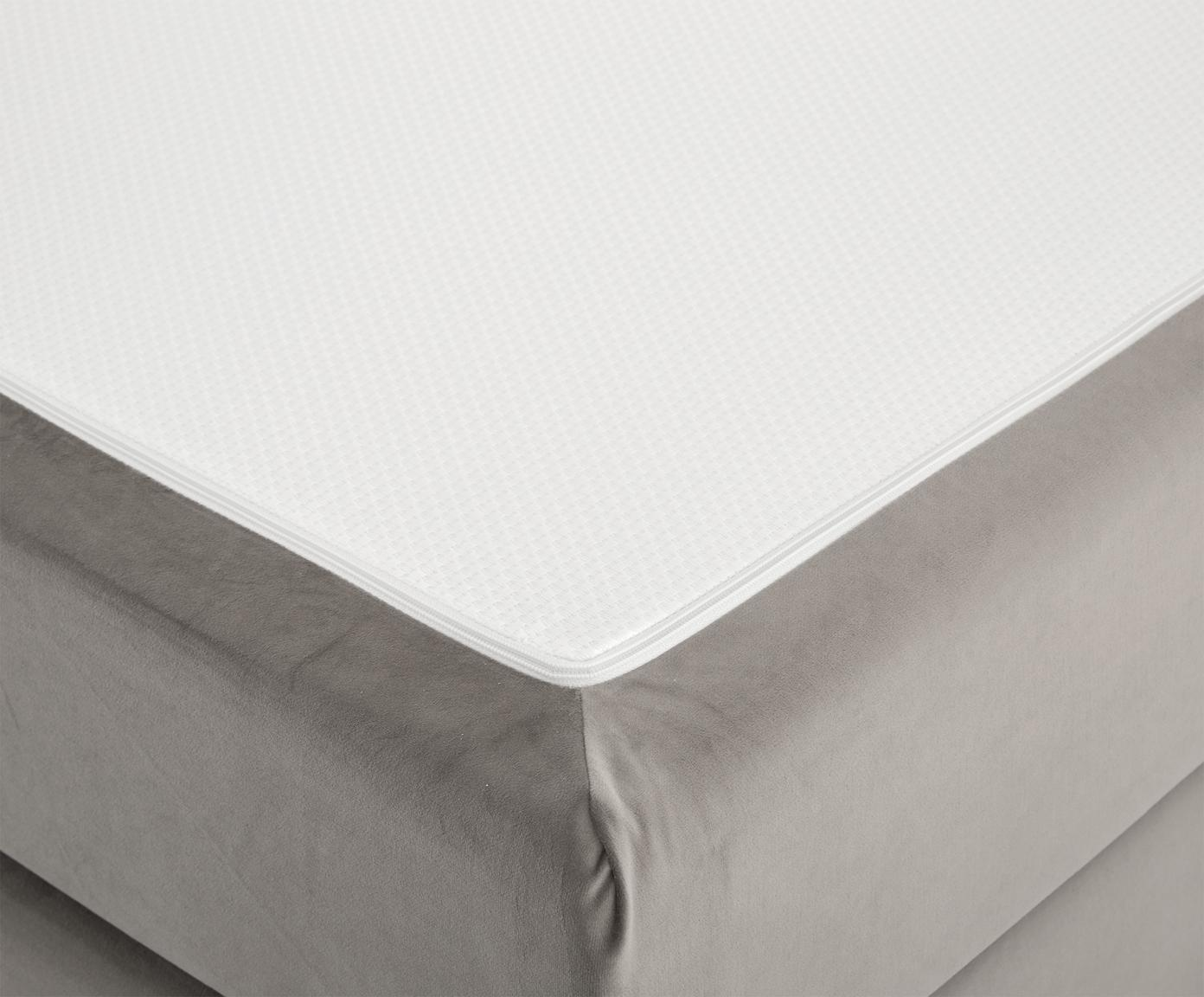 Premium fluwelen boxspring bed Phoebe, Matras: 7-zones-pocketveringkern , Poten: massief gelakt beukenhout, Taupe, 180 x 200 cm