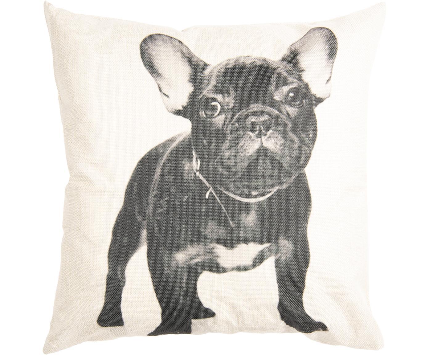 Poszewka na poduszkę Dog, Poliester, Złamana biel, czarny, S 45 x D 45 cm