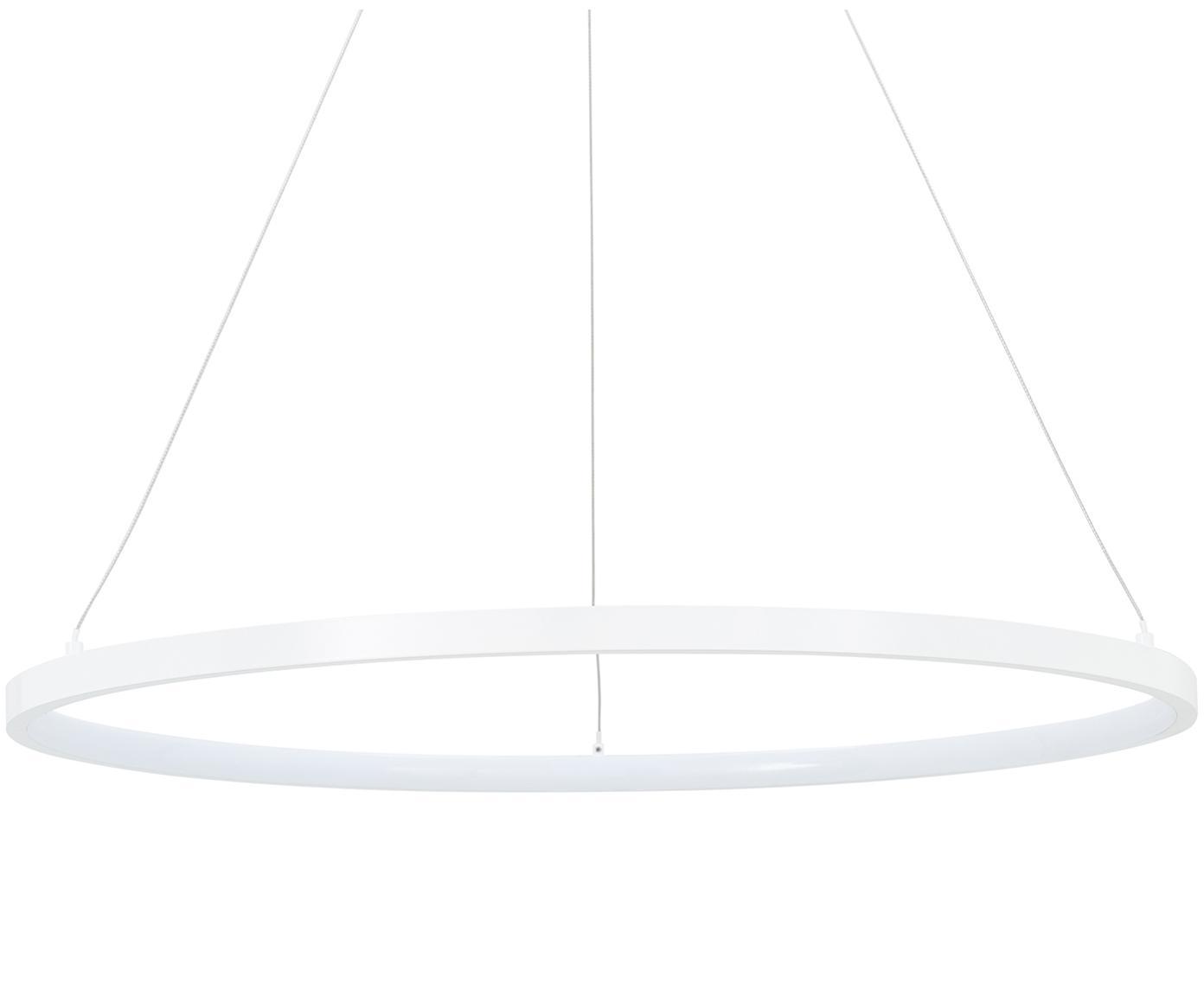 Lampa wisząca LED Jay, Osłona mocowania sufitowego: biały, matowy Klosz: biały, matowy Kabel: odcienie , Ø 60 x W 150 cm