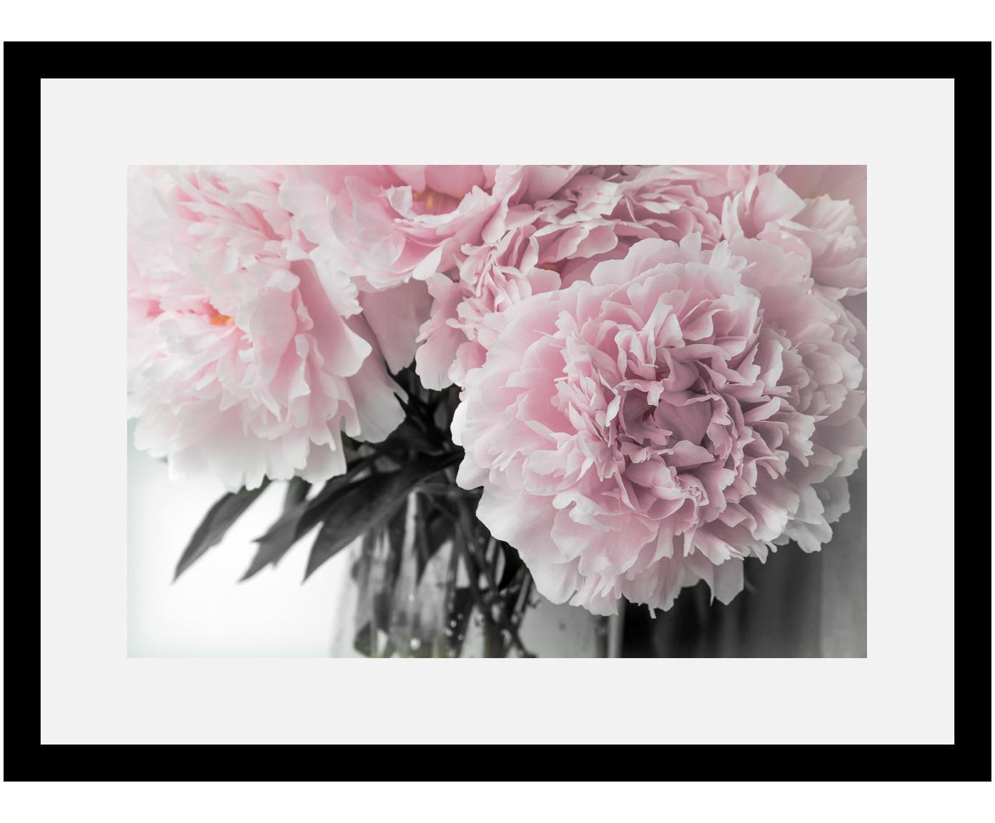 Stampa digitale incorniciata Pink Flowers, Immagine: stampa digitale, Cornice: struttura di legno reale, Immagine: rosa, bianco, verde scuro<br>Cornice: nero, L 40 cm x A 30 cm