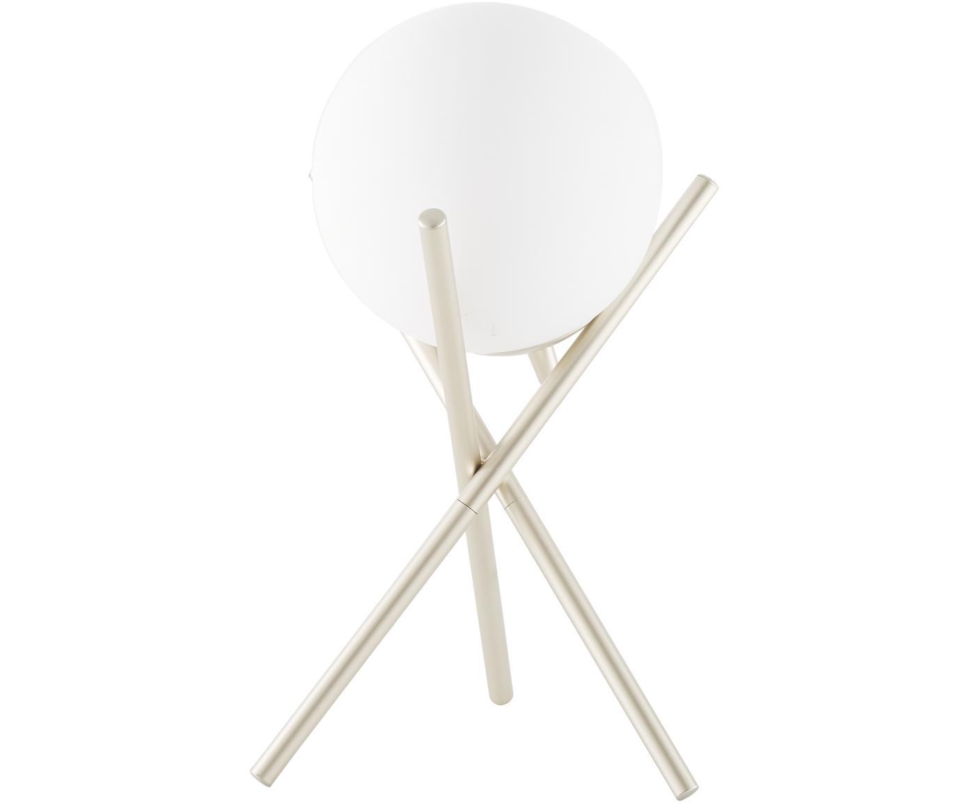 Tripod Tischlampe Erik mit Glasschirm, Lampenschirm: Glas, Lampenfuß: Metall, lackiert, Weiß, Champagnerfarben, Ø 15 x H 33 cm