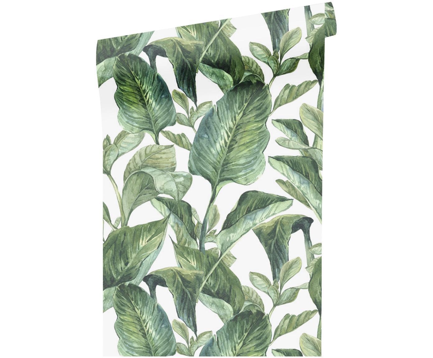 Papel pintado adhesivo Leaves, Lámina de vinilo adhesiva, Blanco, verde, An 90 x L 250 cm