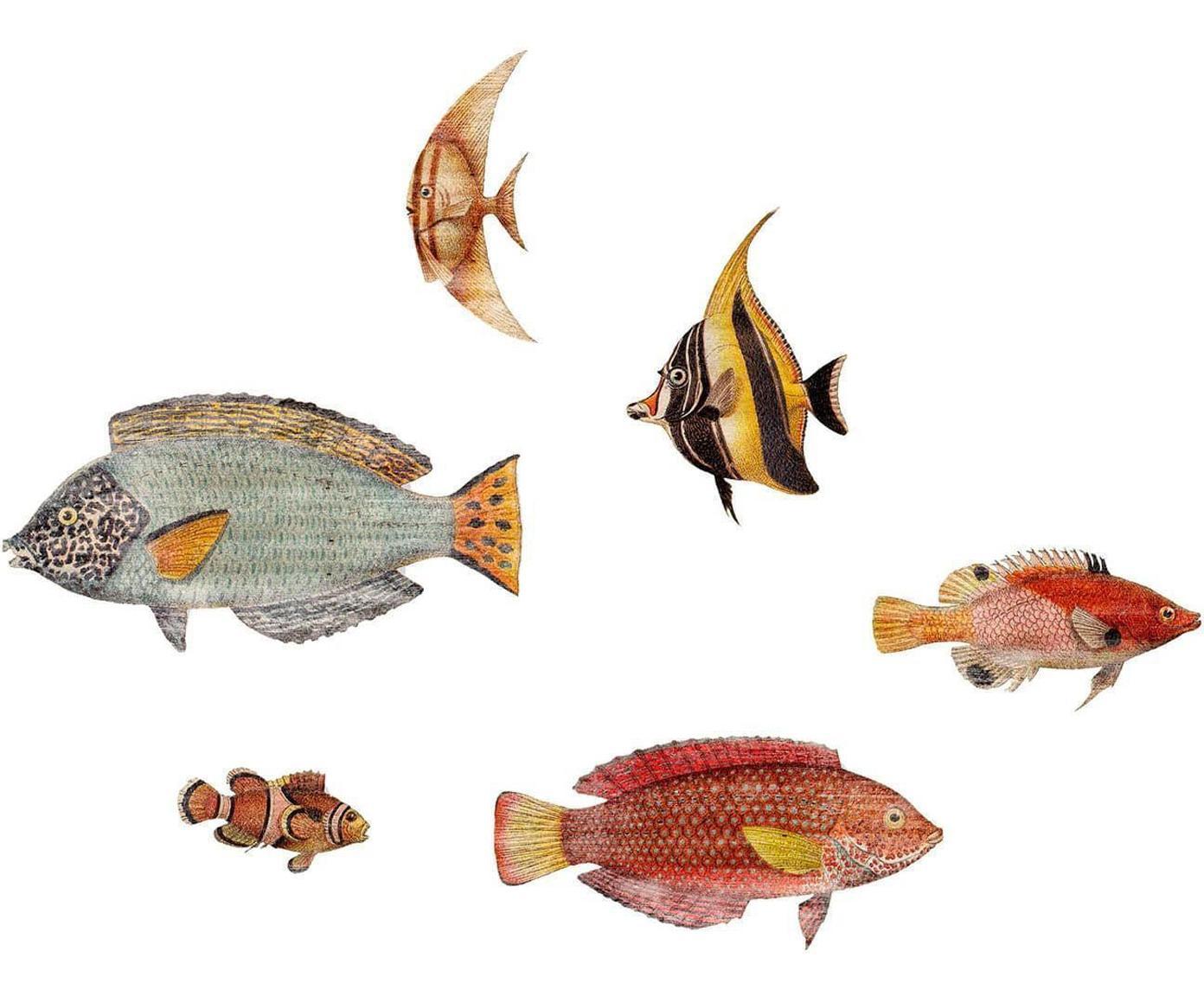 Set de decoraciones de pared Fishes, 6pzas., Tablero de fibras de densidad media (MDF), Multicolor, Tamaños diferentes