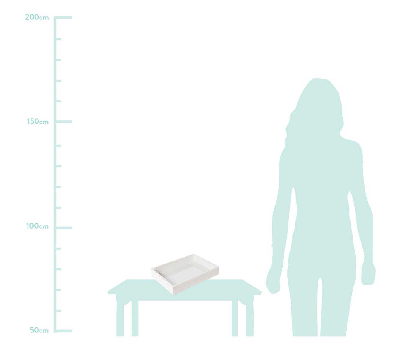 Vassoio bianco lucido Tracy, Vassoio: pannello di fibra a media, Bianco, Larg. 50 x Prof. 35 cm