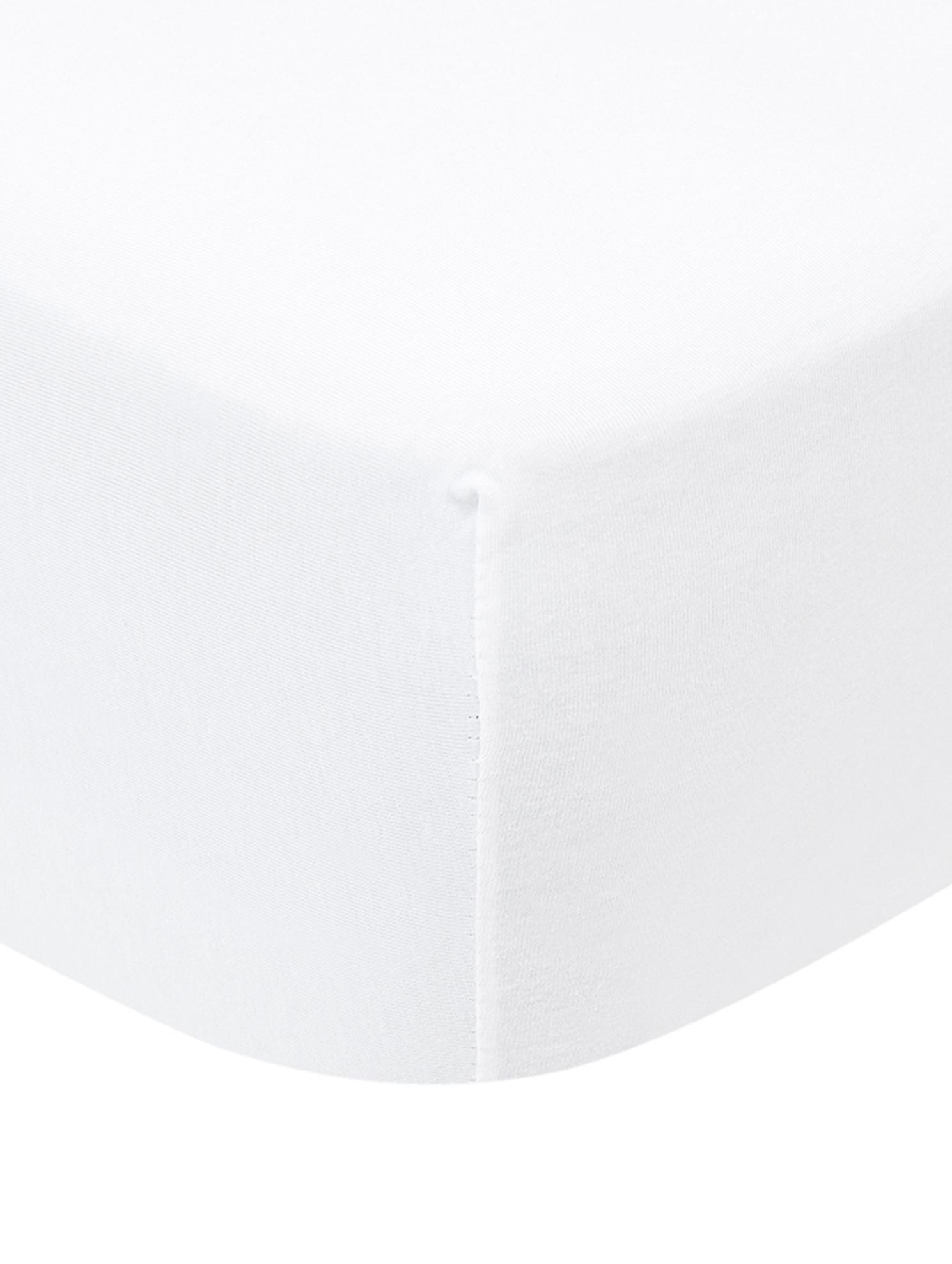 Prześcieradło na łóżko kontynentalne z gumką z jerseyu Lara, 95% bawełna, 5% elastan, Biały, S 90-100 x D 200 cm