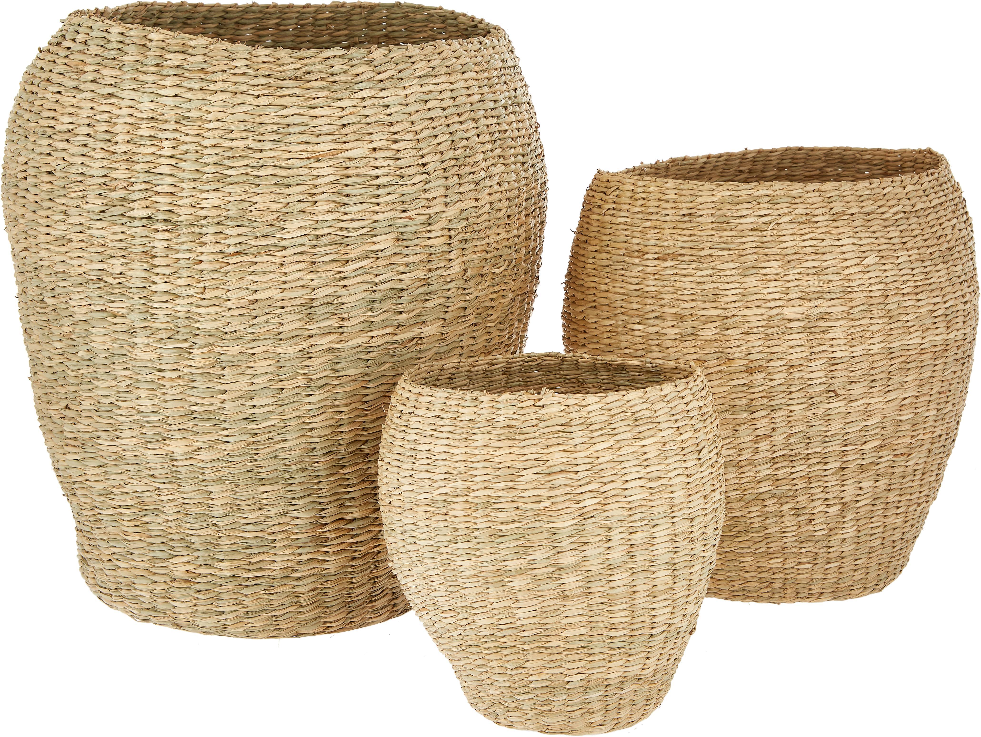 Set de cestas Oliver, 3pzas., Junco marino, tejido, Algas marinas, Set de diferentes tamaños