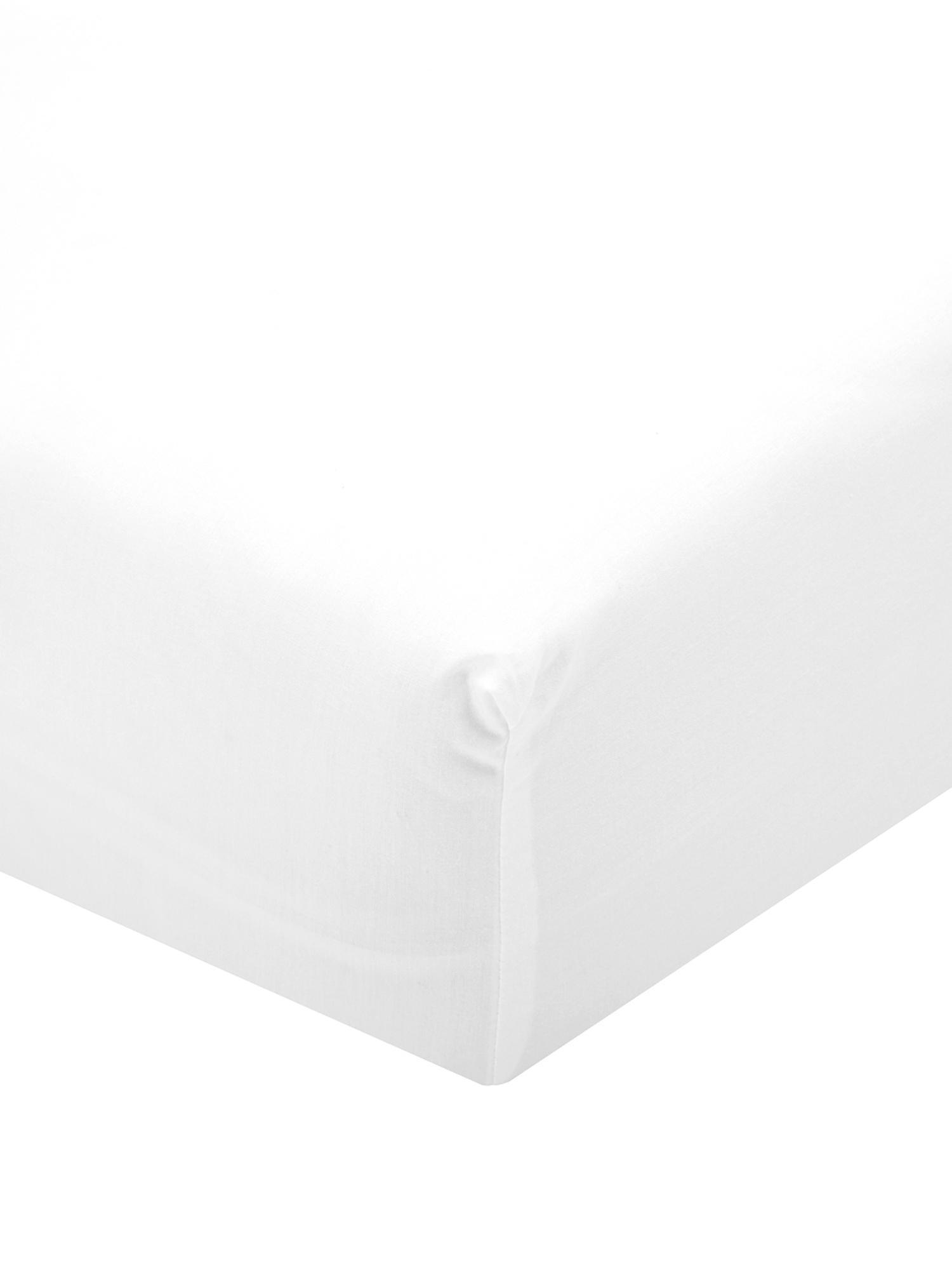 Lenzuolo con angoli in percalle Elsie, Tessuto: percalle, Bianco, 90 x 200 cm