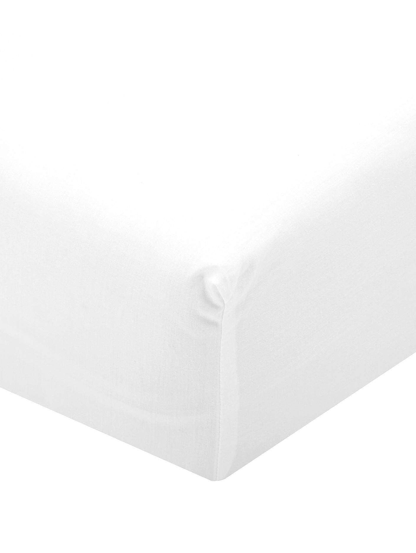 Spannbettlaken Elsie in Weiß, Perkal, Webart: Perkal, Weiß, 90 x 200 cm