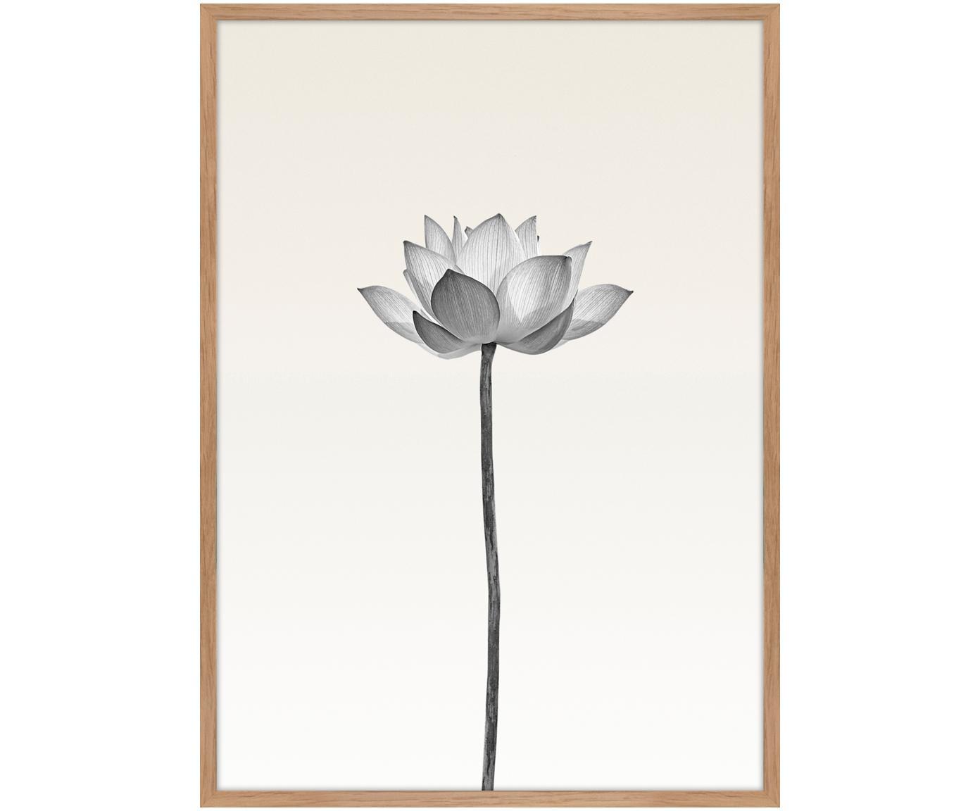 Ingelijste digitale print Lotus, Afbeelding: digitale druk op papier (, Lijst: HDF, Zwart, wit, beige, 50 x 70 cm