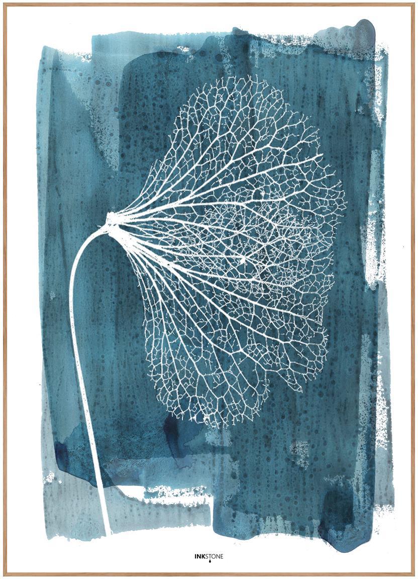 Gerahmter Digitaldruck White Ginko, Bild: Digitaldruck auf Papier (, Rahmen: Hochdichte Holzfaserplatt, Blau, Weiss, 50 x 70 cm