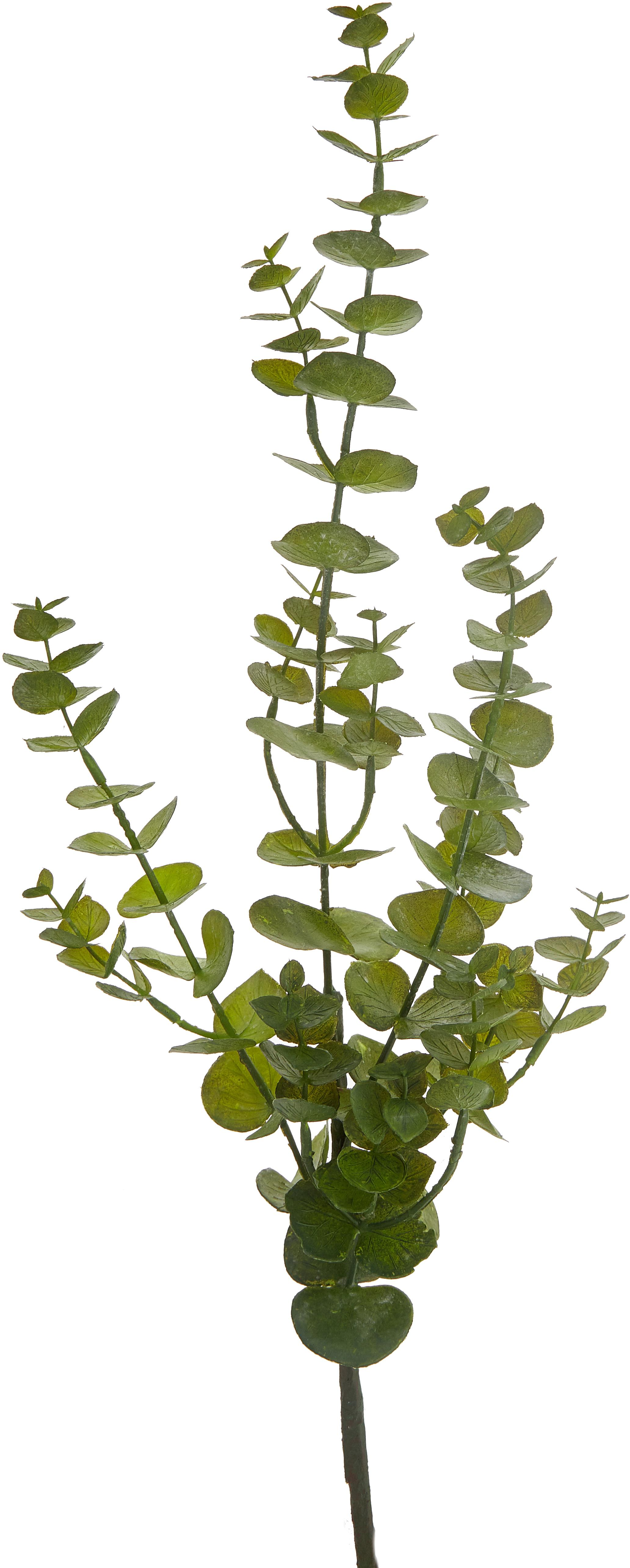 Kunstblume Eukalyptus, Kunststoff, Metall, Grün, 20 x 81 cm