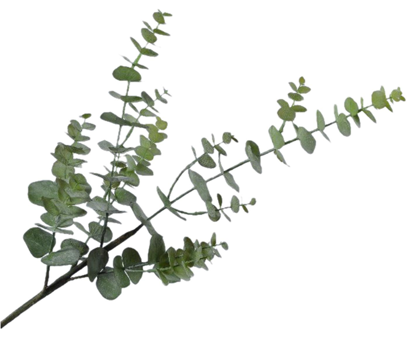 Kunstbloem Eucalyptus Edwin, Kunststof, Groen, 20 x 81 cm