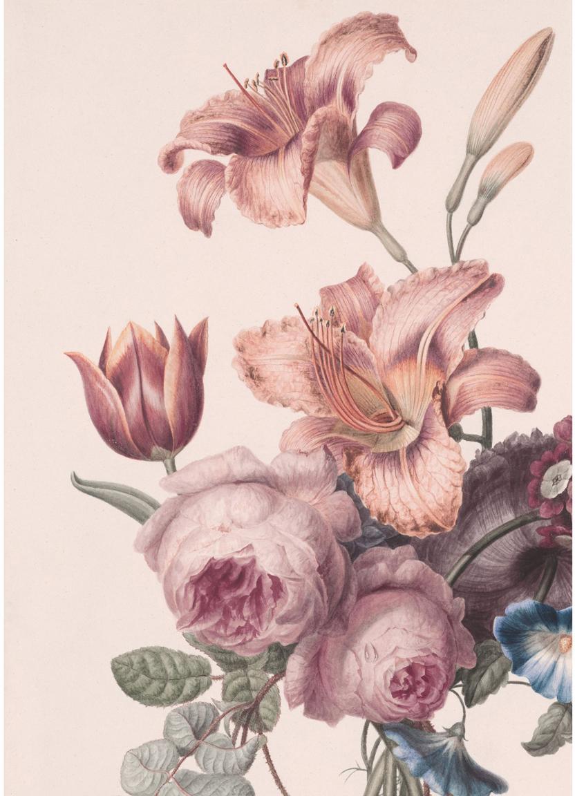 Fototapete Labelle, Papier, Rosatöne, Grün, Blau, 200 x 280 cm
