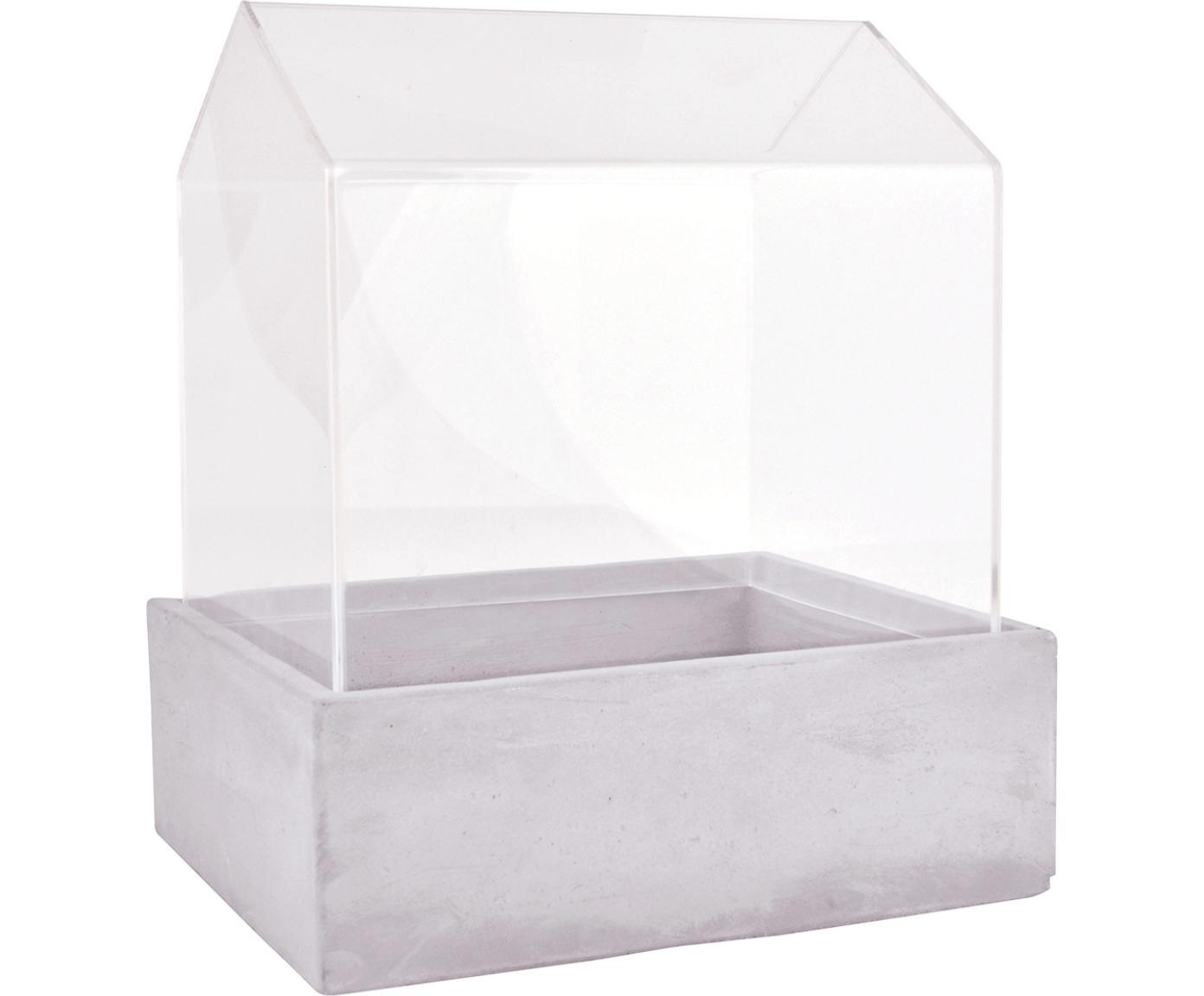 Mini-serra Budi, Cemento, vetro, Grigio trasparente, Larg. 24 x Alt. 28 cm