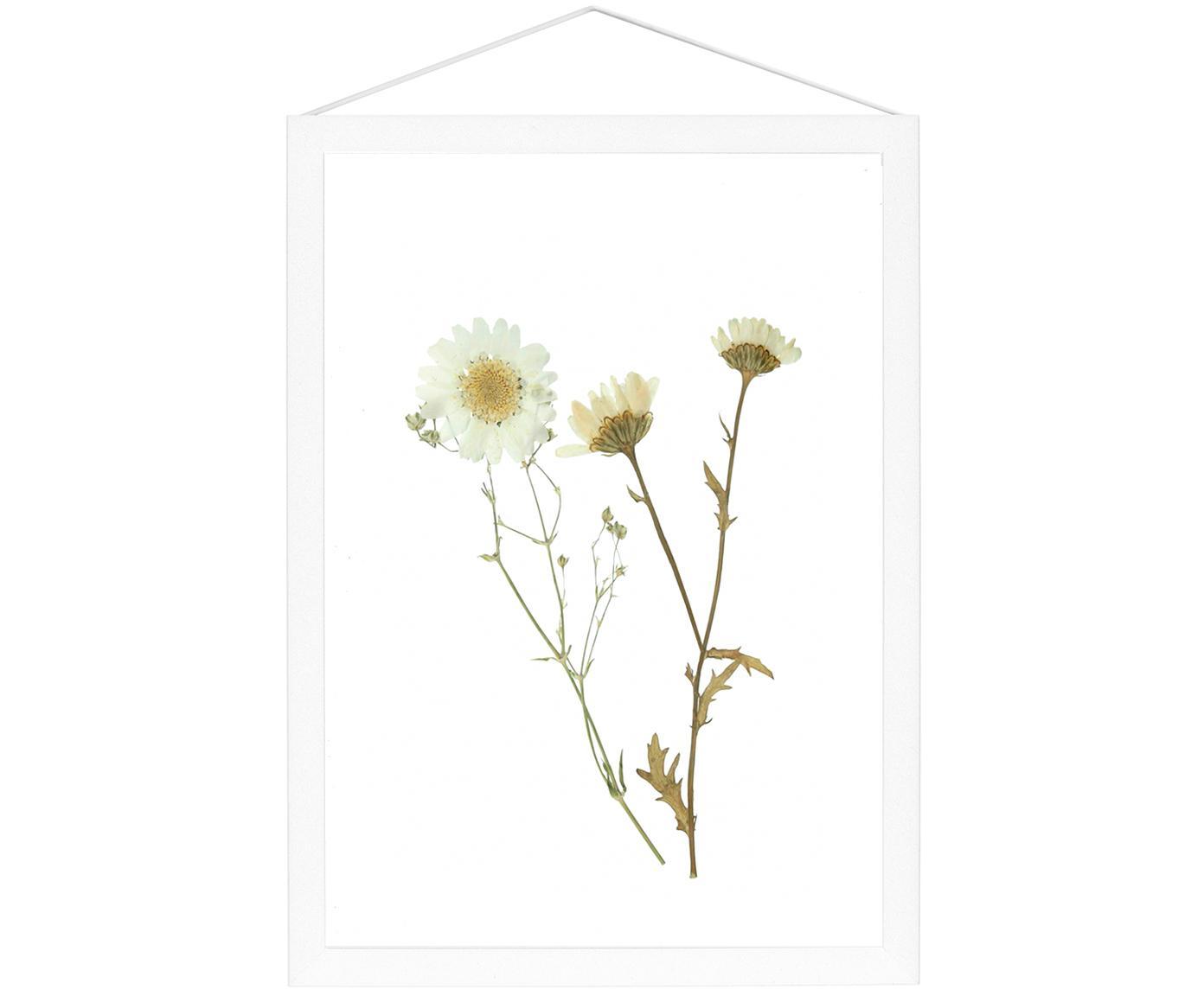 Cornice Frame, Cornice: alluminio verniciato a po, Cornice: bianco Sospensione: nero Fronte e retro: trasparente, Larg. 17 x Alt. 23 cm
