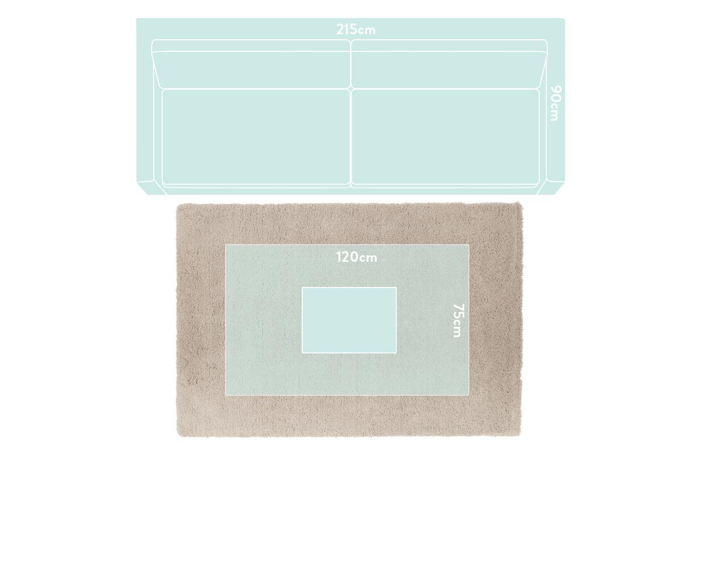 Pluizig hoogpolig vloerkleed Leighton in beige, Bovenzijde: 100% polyester (microveze, Onderzijde: 70% polyester, 30% katoen, Beige, B 200 x L 300 cm (maat L)