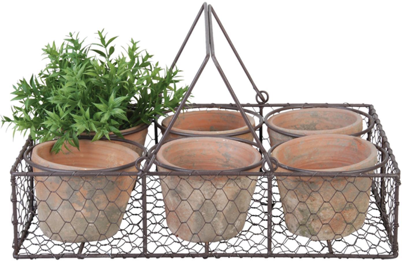 Plantenpottenset Daria, 7-delig, Metaal, terracotta, Terracottarood, zwart, 37 x 11 cm