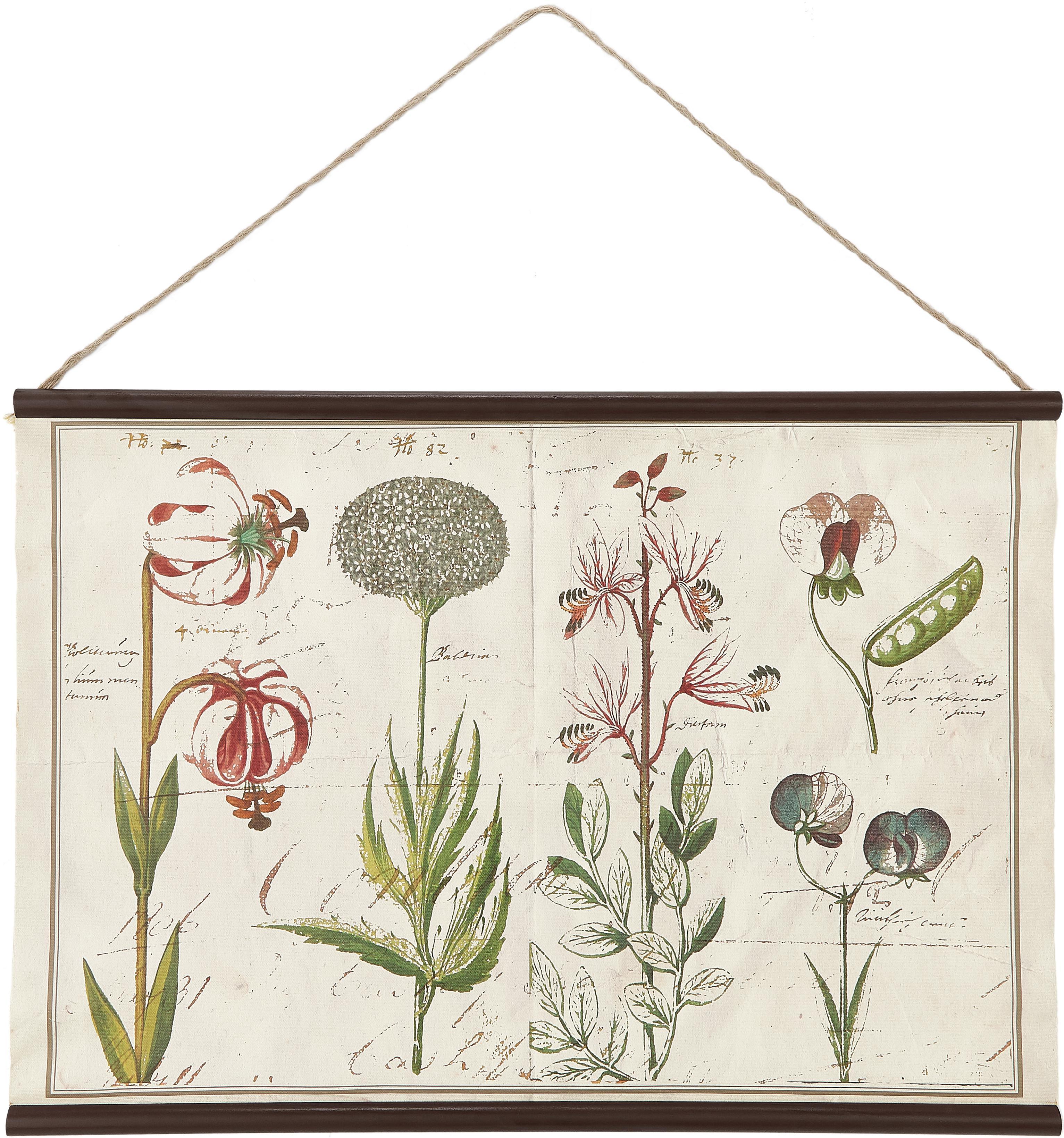 Digitale print op canvas Botanic, Digitale print op canvas, Multicolour, 70 x 50 cm
