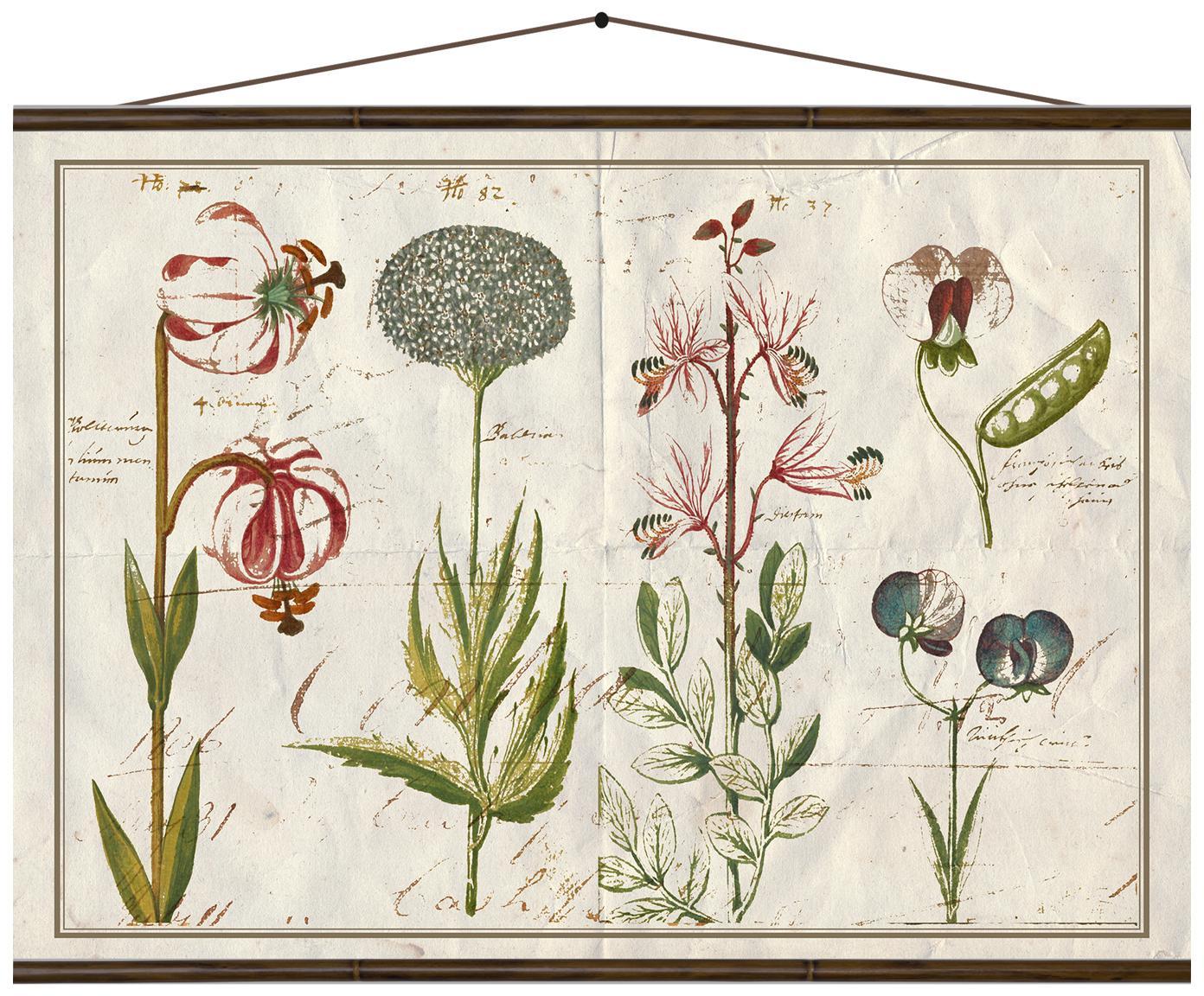Impresión digital sobre lienzo Botanic, Impresión digital sobre lienzo, Multicolor, An 70 x Al 50 cm