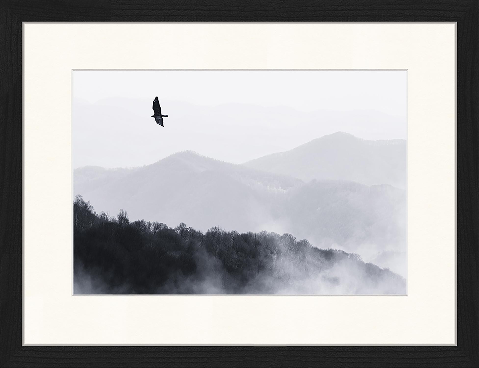 Oprawiony druk cyfrowy Bird Flying Over Misty Hills, Czarny, biały, S 43 x W 33 cm