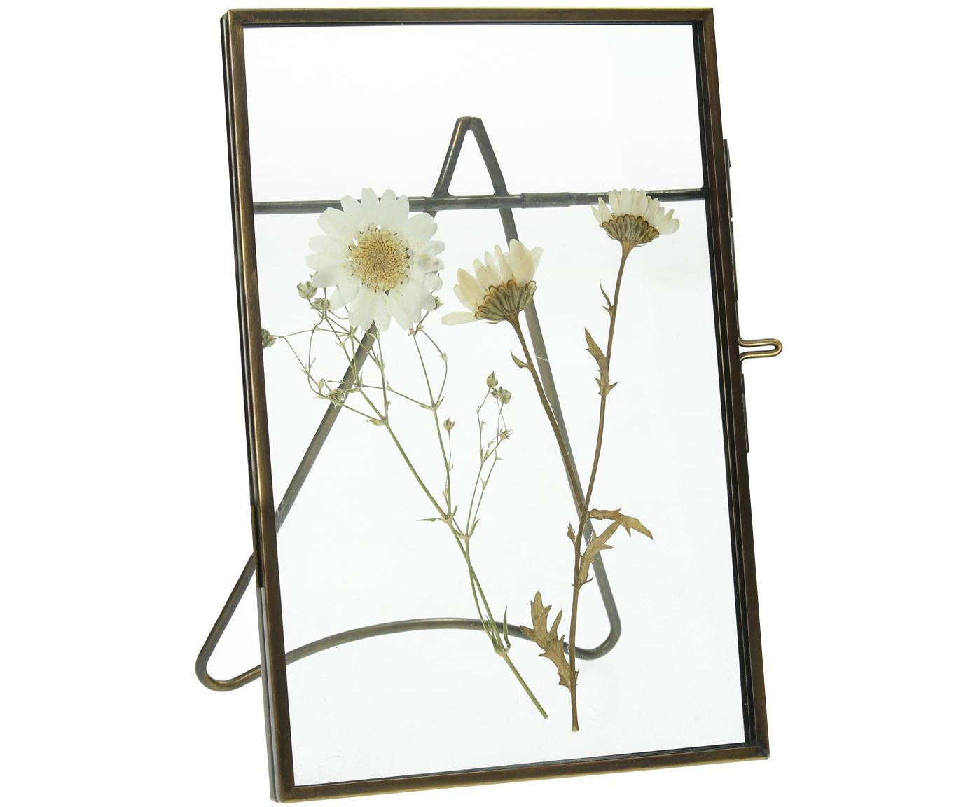 Cornice da tavolo in metallo Dried Flower, Metallo rivestito, Ottonato, 10 x 15 cm