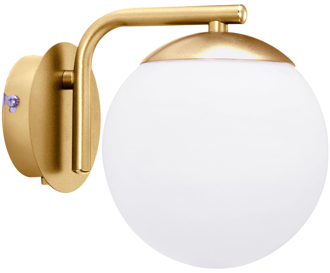 Aplique Grant, con enchufe, Pantalla: vidrio opalino, Latón, blanco, An 15 x Al 18 cm