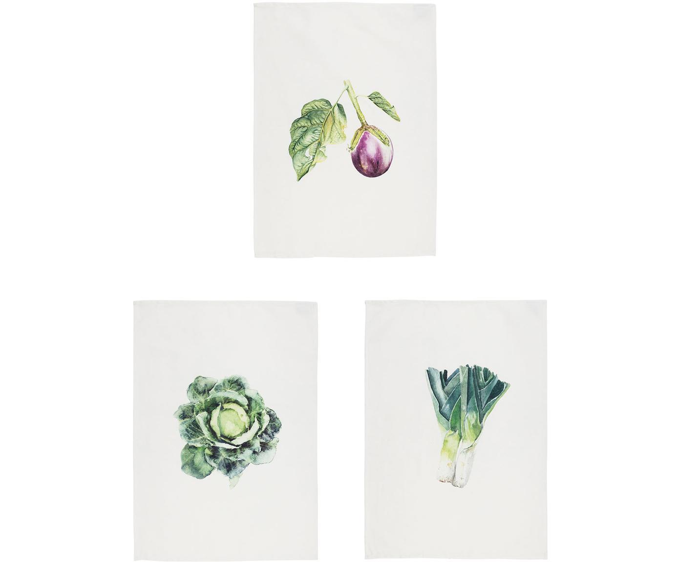 Paños de cocina Primeur, 3uds., 100%algodón, Blanco, verde, An 50 x L 70 cm