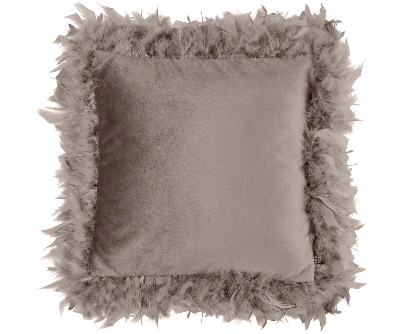 Samt-Kissen Joselyn mit Federand, mit Inlett, Hülle: Polyestersamt, Federn, Dunkles Taupe, 40 x 40 cm