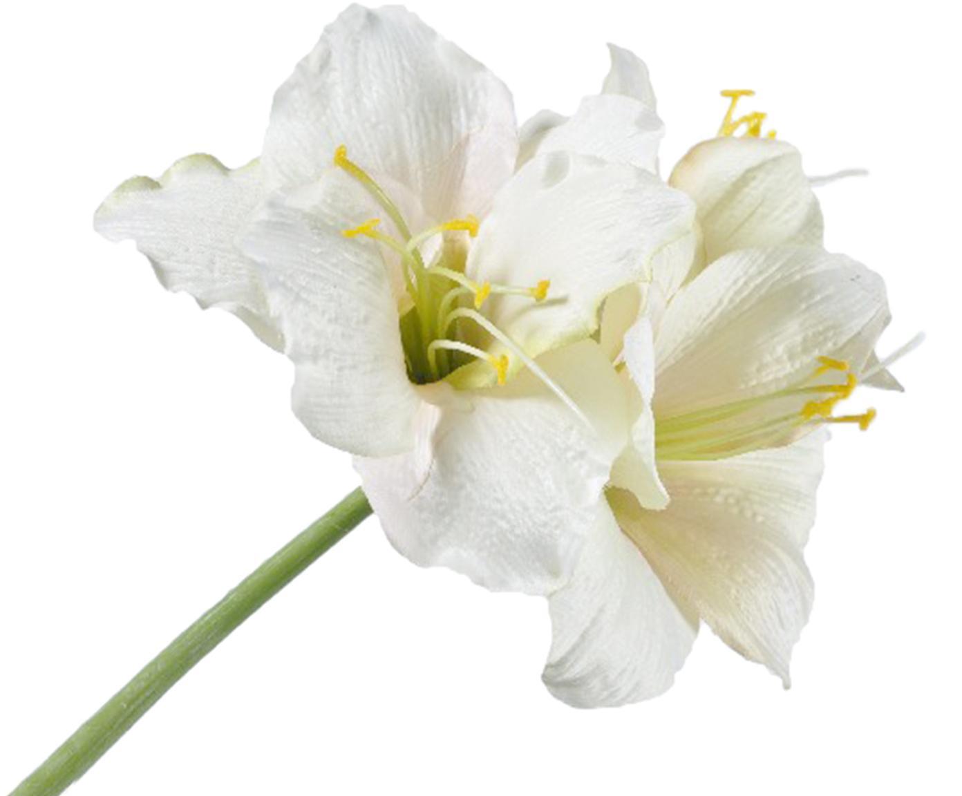 Kunstblume Amaryllis, Polyester, Kunststoff, Metall, Weiß, Gelb, Grün, L 54 cm