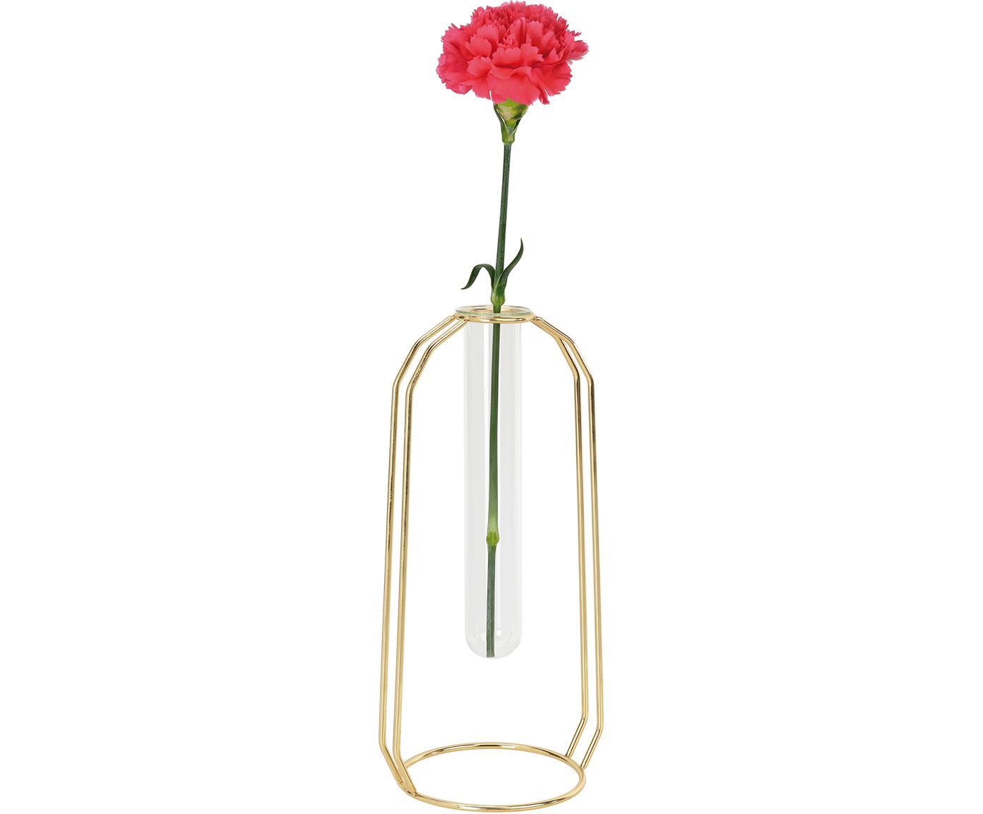 Glas-Vase Meder mit Metallgestell, Gestell: Metall, beschichtet, Goldfarben, Transparent, 12 x 25 cm
