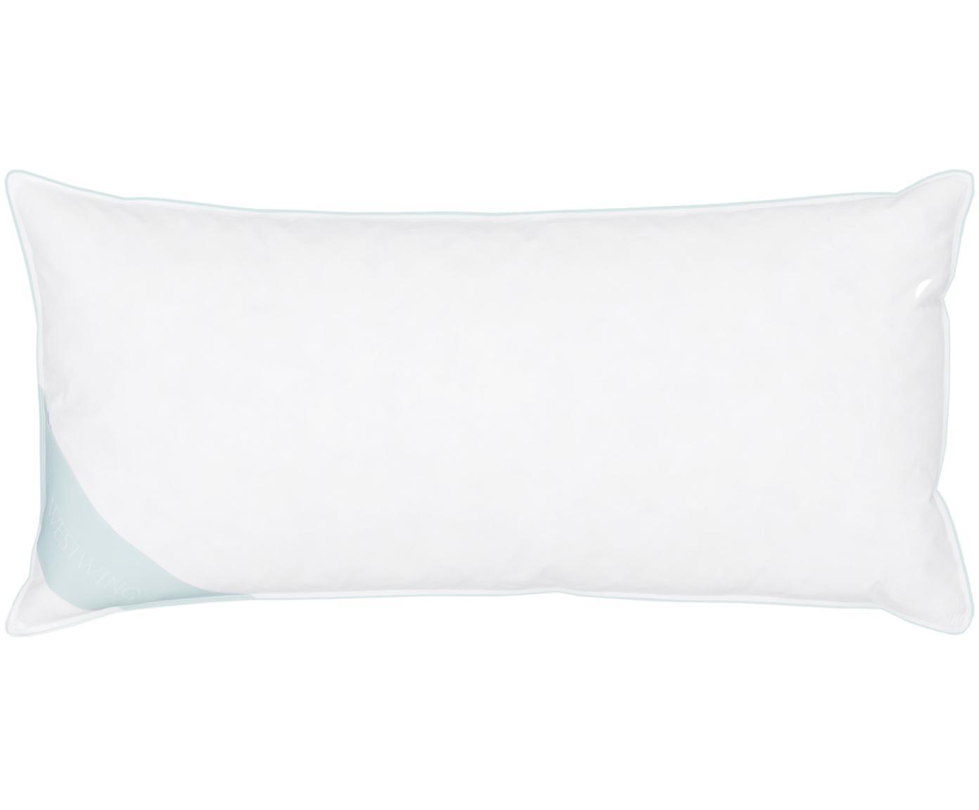 Feder-Kopfkissen Comfort, fest, Hülle: 100% Baumwolle, Mako-Köpe, Weiß mit türkiser Satinbiese, 40 x 80 cm