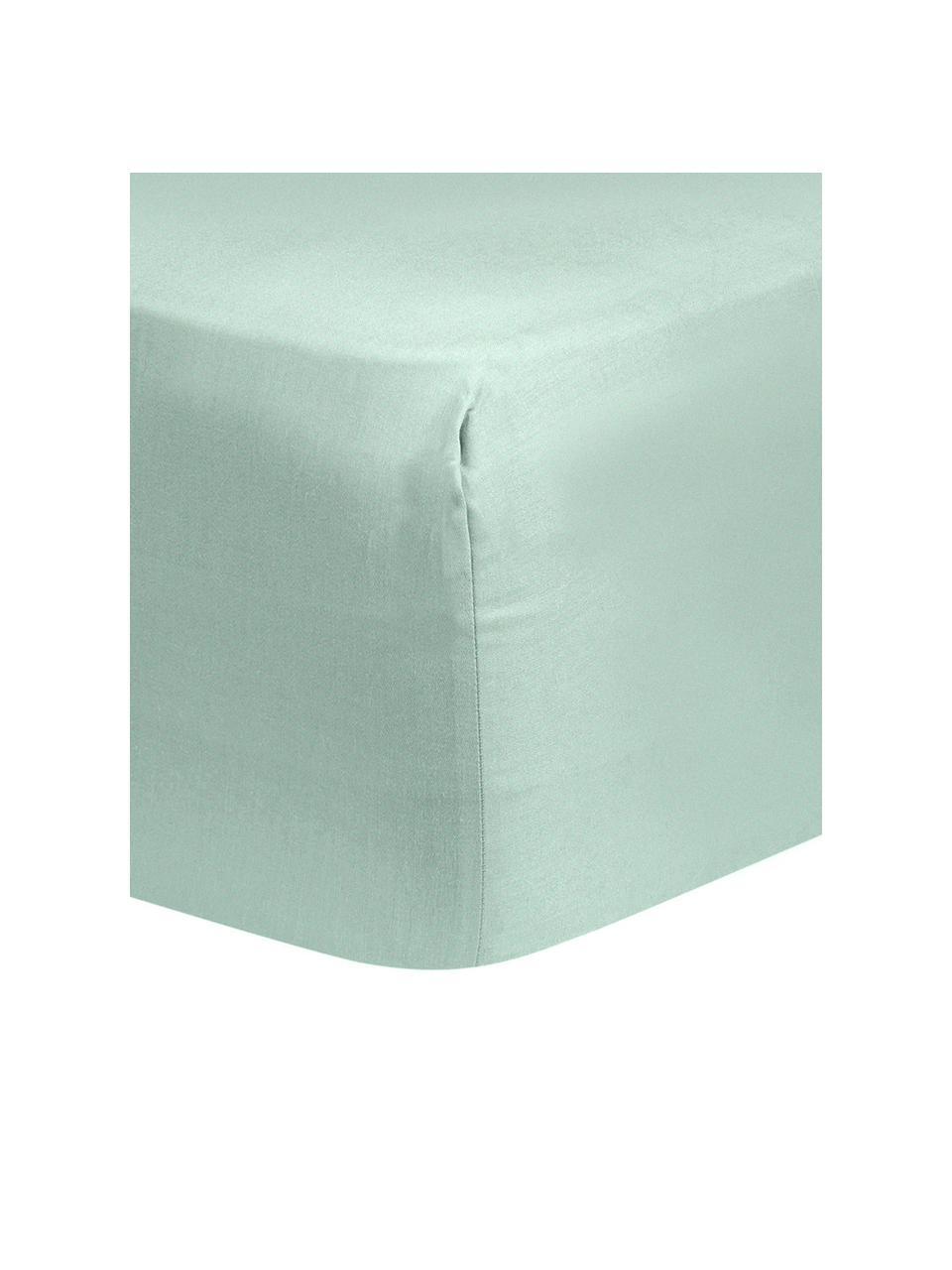 Lenzuolo con angoli in raso di cotone verde salvia Comfort, Verde salvia, Larg. 180 x Lung. 200 cm