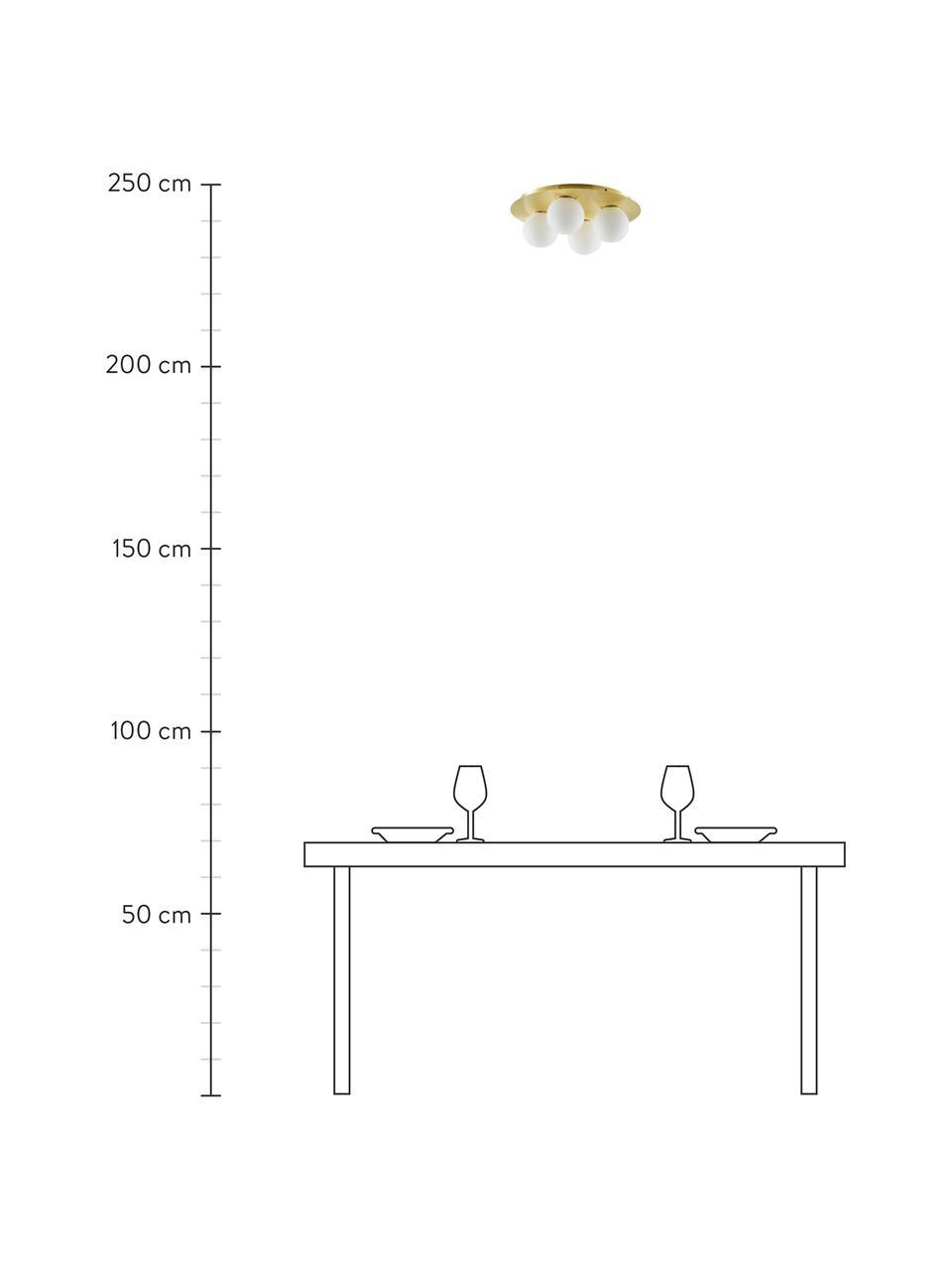 Plafoniera da parete e soffitto dorata Hitch, Baldacchino: metallo ottonato, Paralume: vetro, Baldacchino e rilegatura: ottone opaco Paralume: bianco, Ø 36 x Alt. 12 cm