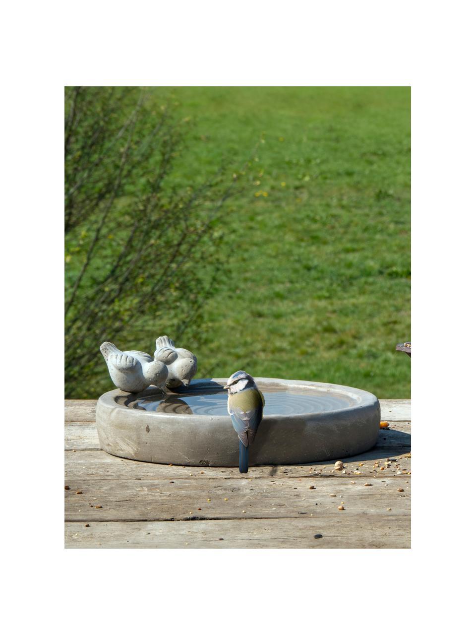 Vogeltränke Bettany, Beton, Grau, Ø 29 x H 11 cm