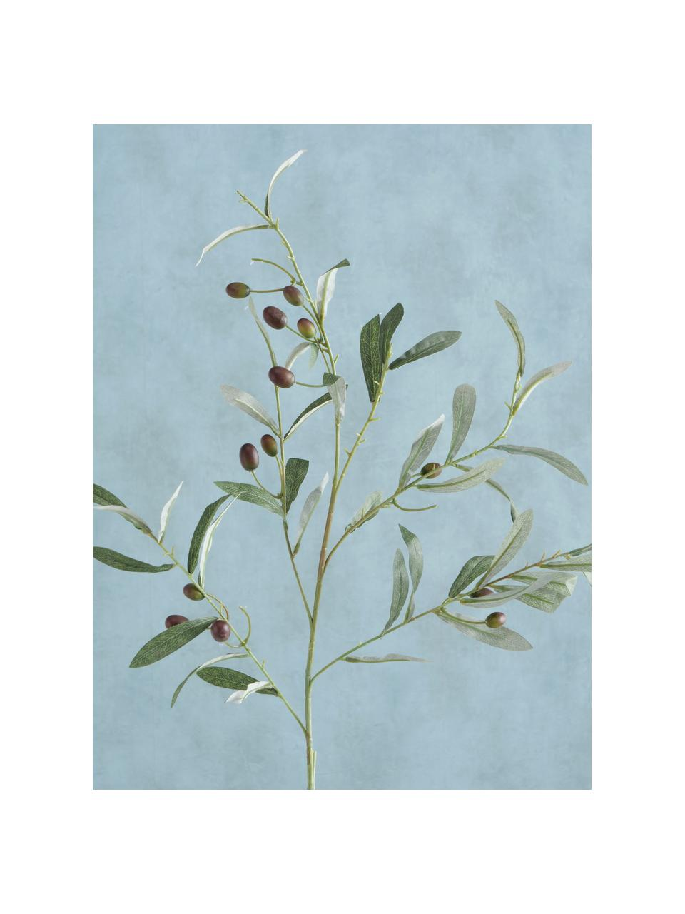 Handgemaakte kunsttak Olives Garden, Kunststof, Groen, 17 x 77 cm