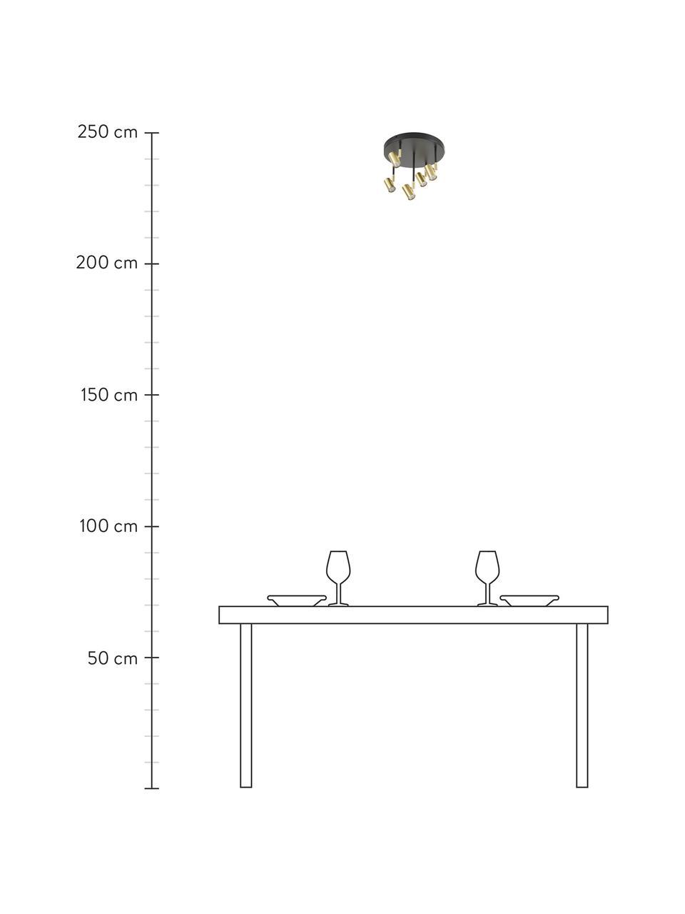 Kleiner Deckenstrahler Tony in Schwarz-Gold, Baldachin: Metall, pulverbeschichtet, Baldachin: Schwarz, mattFassungen: Messingfarben, Ø 30 x H 26 cm