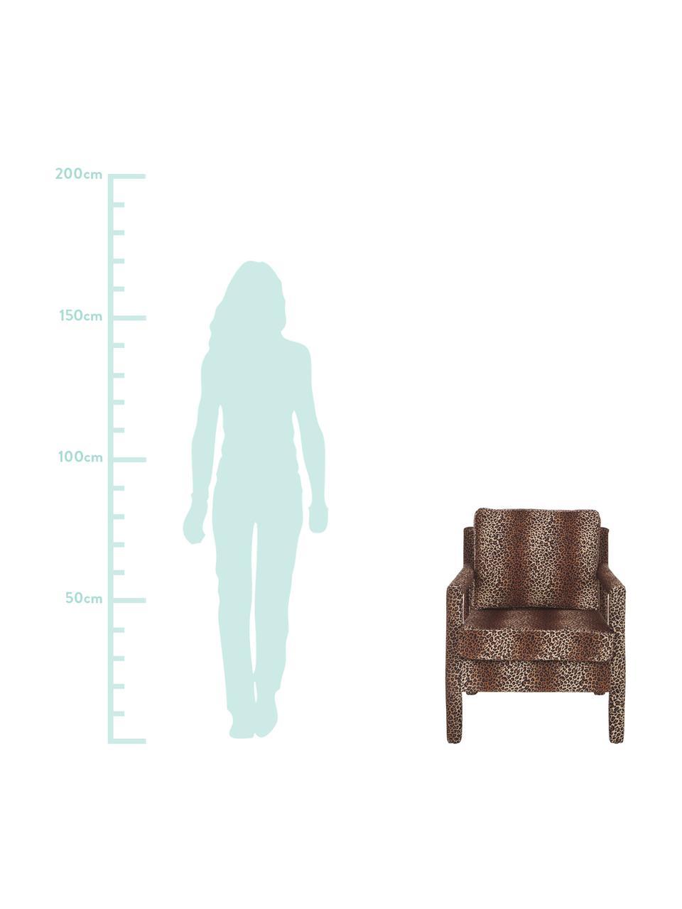 Samt-Sessel Claudette mit braunem Leo-Muster, Bezug: Samt (100% Polyester) Der, Gestell: Massives Kiefernholz, Spe, Braun,Schwarz, B 65 x T 75 cm