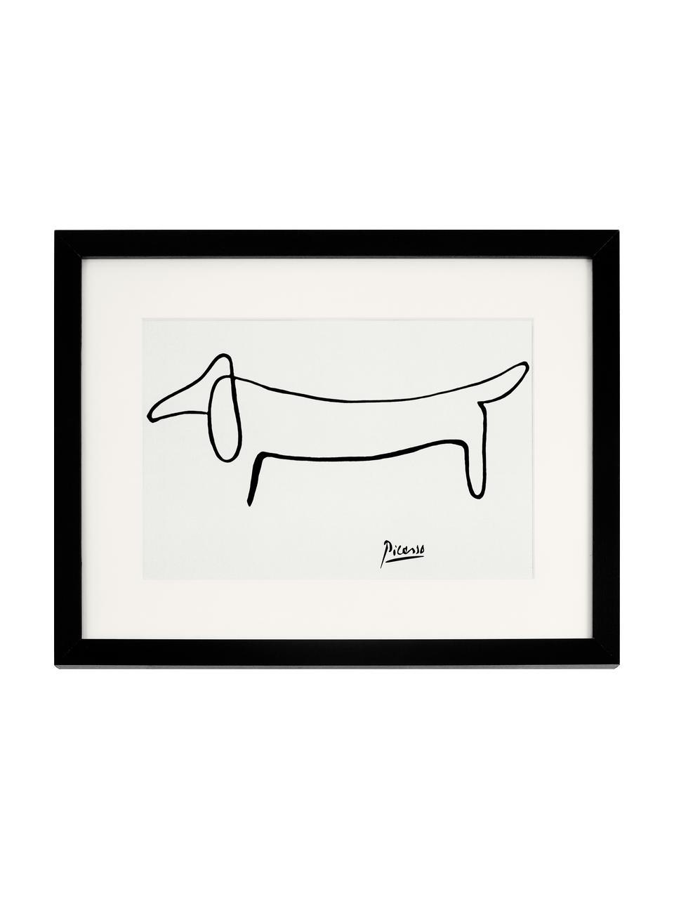 Ingelijste digitale print Picasso's Tekkel, Afbeelding: digitale print op papier,, Lijst: gelakt hout, Wit, zwart, 43 x 33 cm