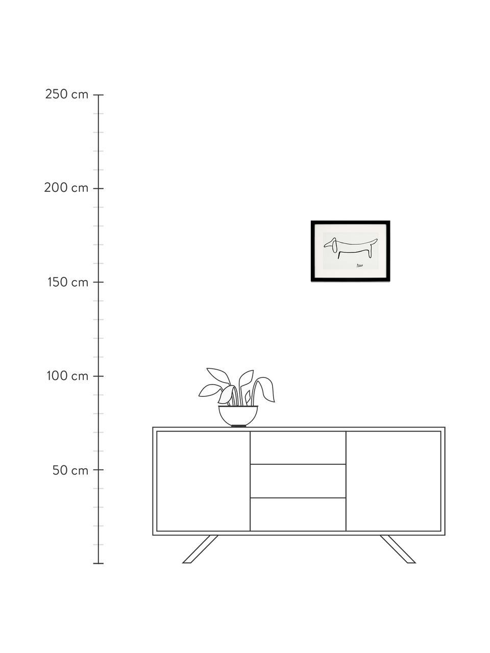 Stampa digitale incorniciata Picasso's Dackel, Immagine: stampa digitale su carta,, Cornice: legno, verniciato, Bianco, nero, Larg. 43 x Alt. 33 cm