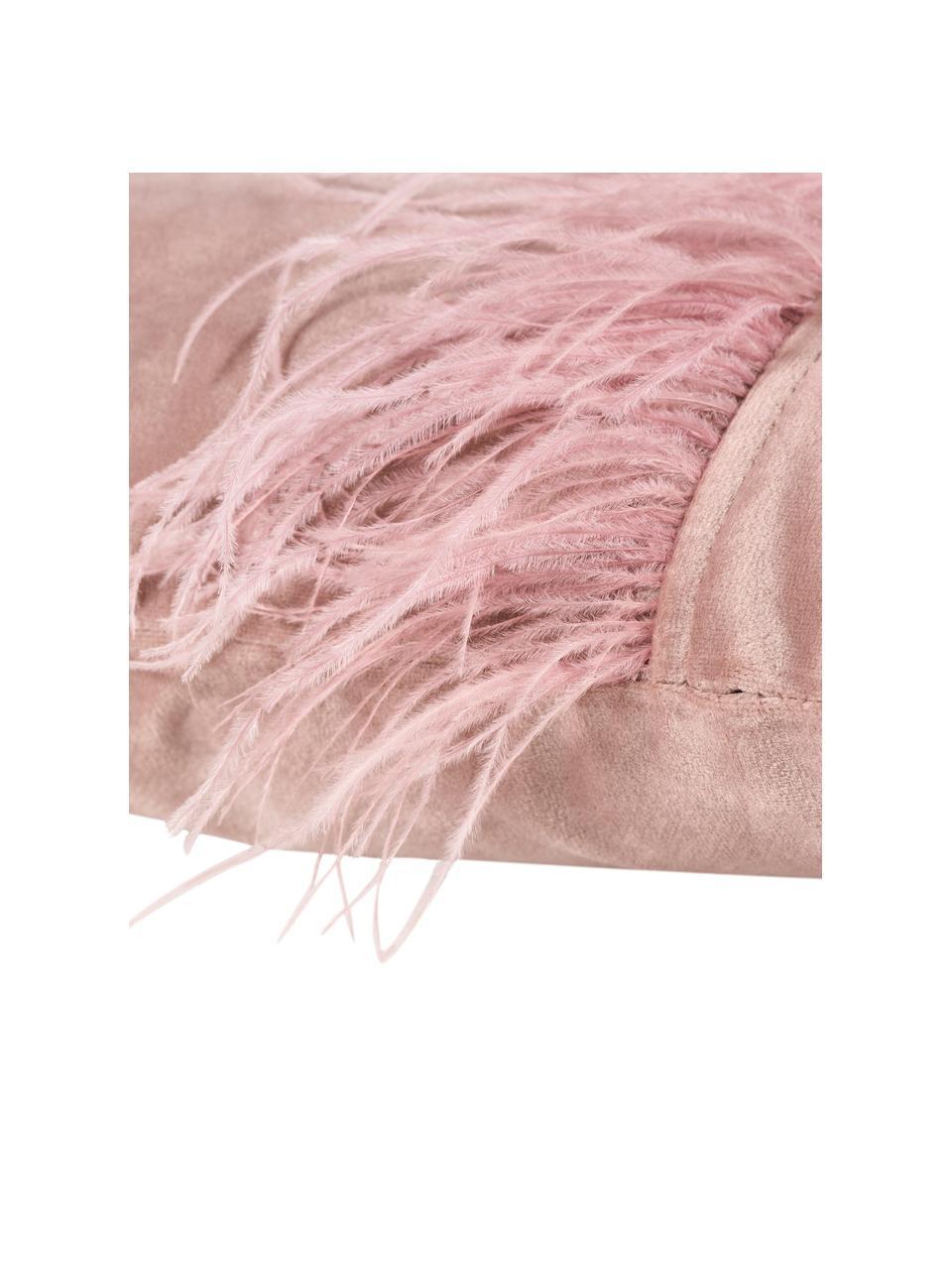 Federa arredo in velluto con piume Ostrich, Frange: piume di struzzo, Rosa, Larg. 40 x Lung. 40 cm