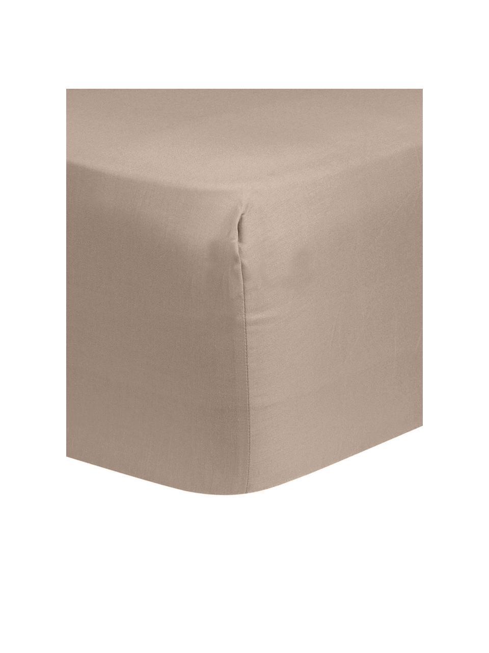 Prześcieradło z gumką z satyny bawełnianej Comfort, Taupe, S 180 x D 200 cm