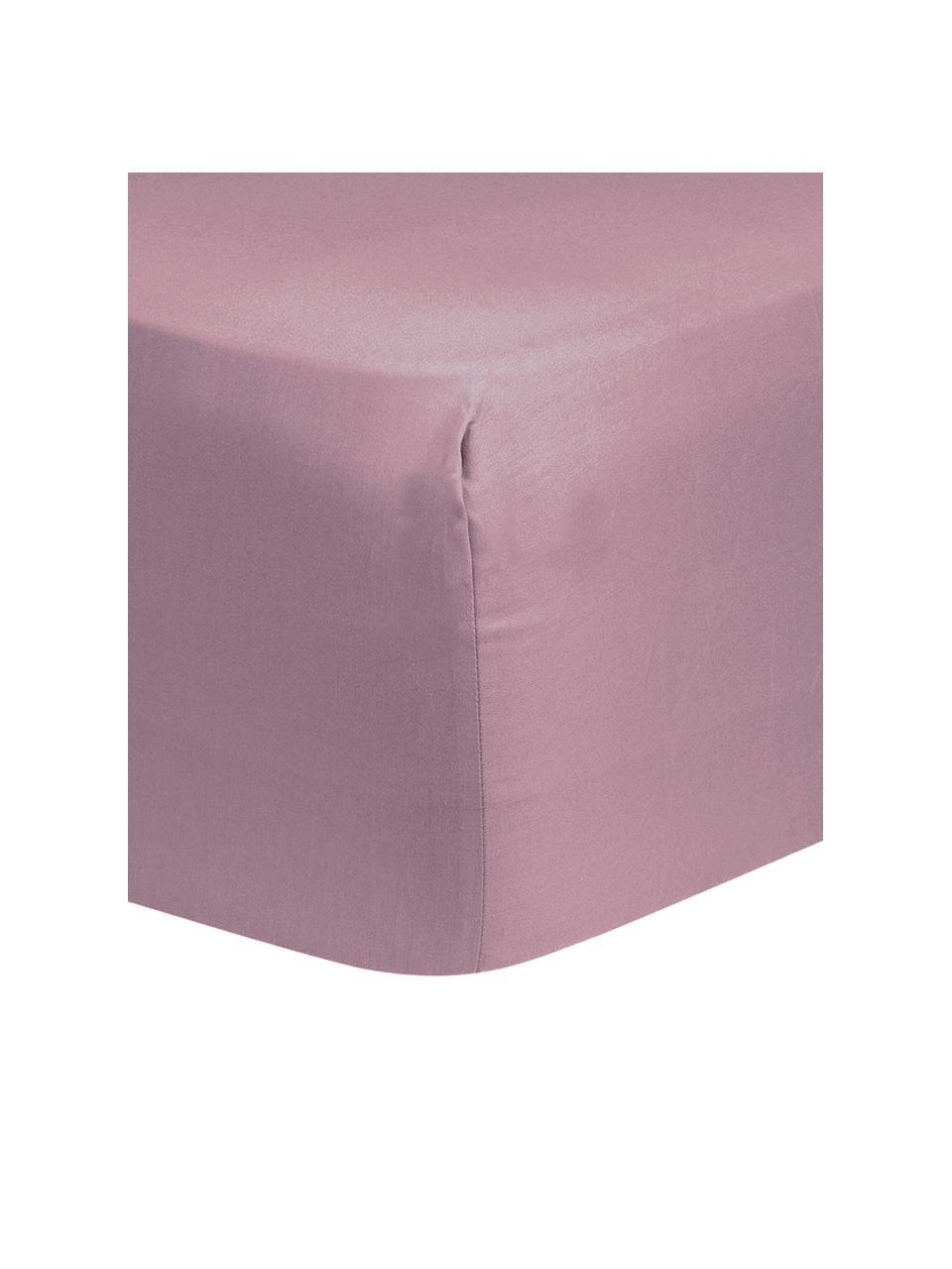 Lenzuolo con angoli in raso di cotone color malva Comfort, Malva, Larg. 180 x Lung. 200 cm