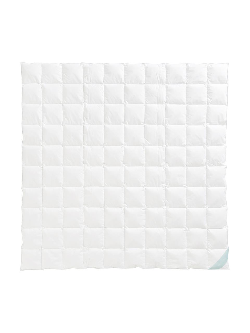 Donzen dekbed Comfort, extra licht, Wit, 200 x 200 cm