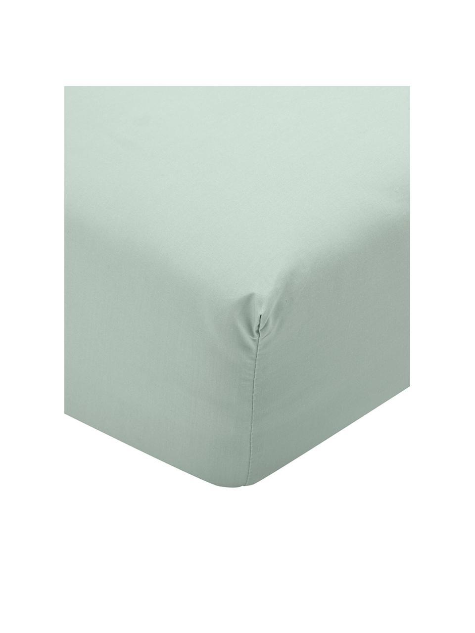 Prześcieradło z gumką z perkalu Elsie, Szałwiowy zielony, S 180 x D 200 cm