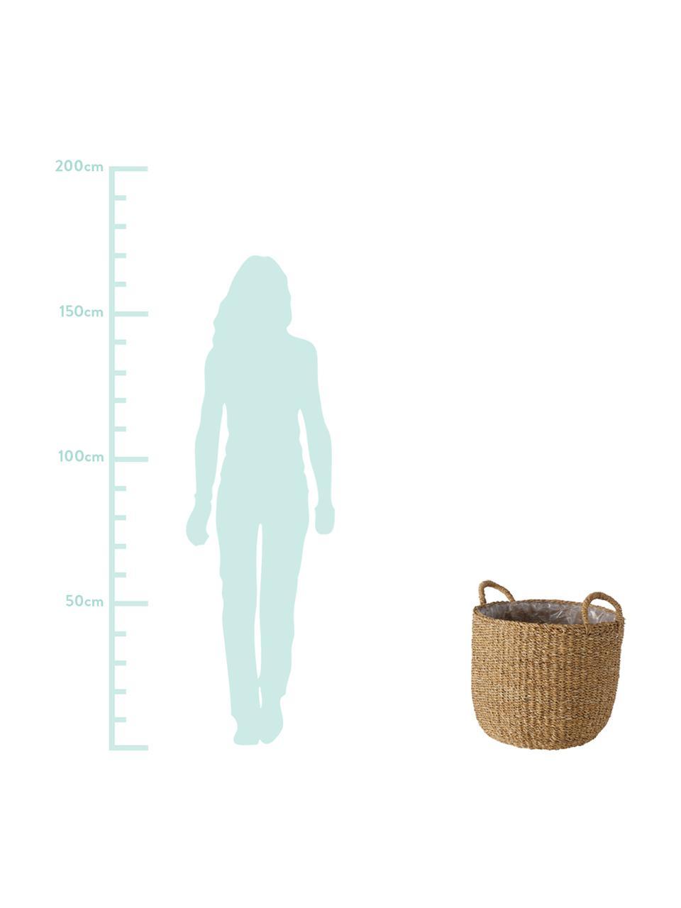 Komplet dużych koszów do roślin Sophy, 3 elem., Trawa morska, Trawa morska, Komplet z różnymi rozmiarami