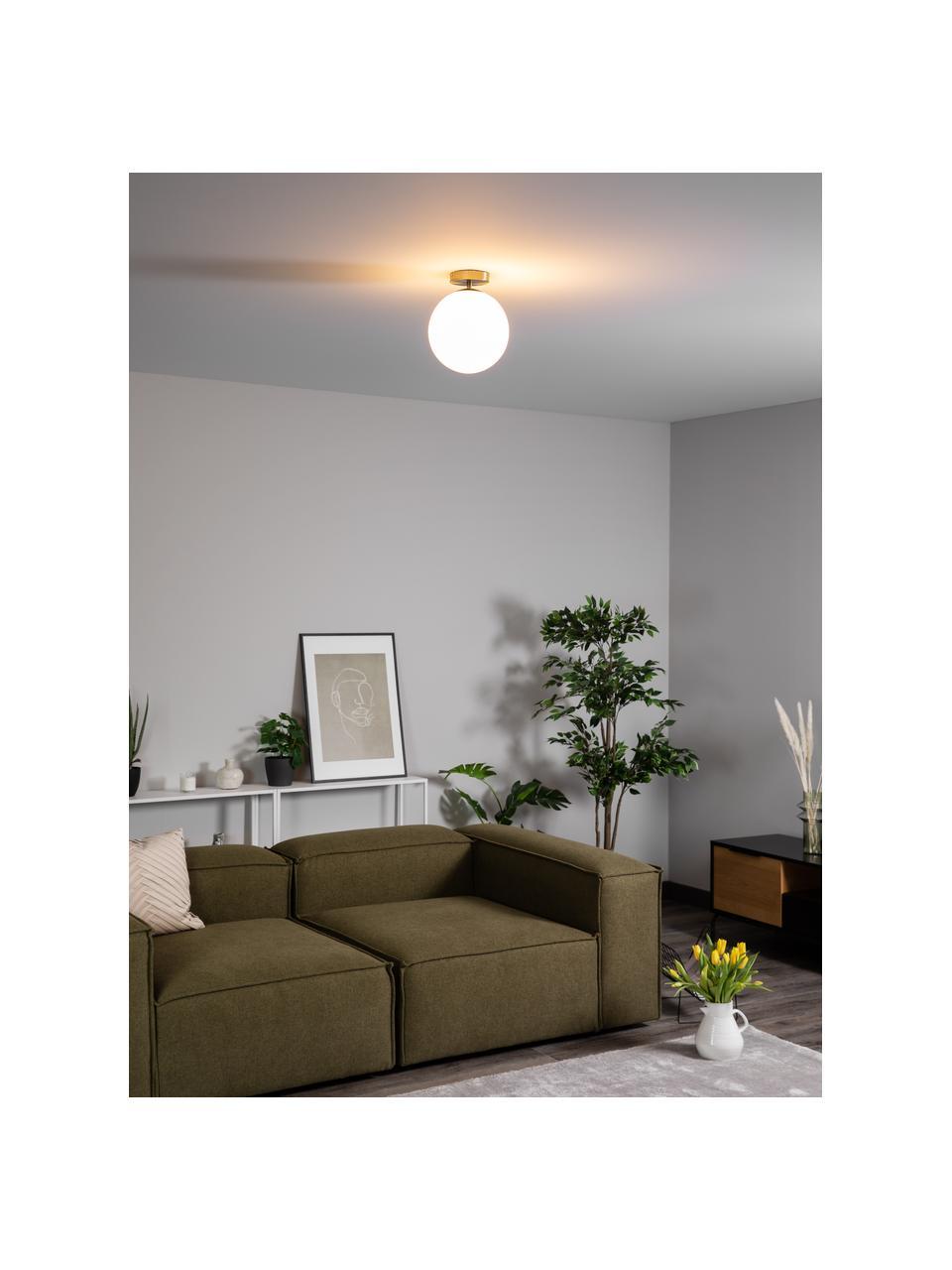Kleine plafondlamp Hitch van glas, Baldakijn: vermessingd metaal, Lampenkap: glas, Baldakijn en fitting: mat messingkleurig. Lampenkappen: wit, Ø 25 x H 30 cm