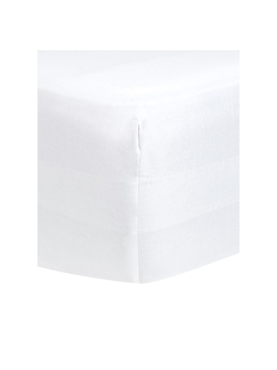 Boxspring-Spannbettlaken Comfort in Weiß, Baumwollsatin, Webart: Satin, leicht glänzend, Weiß, 180 x 200 cm