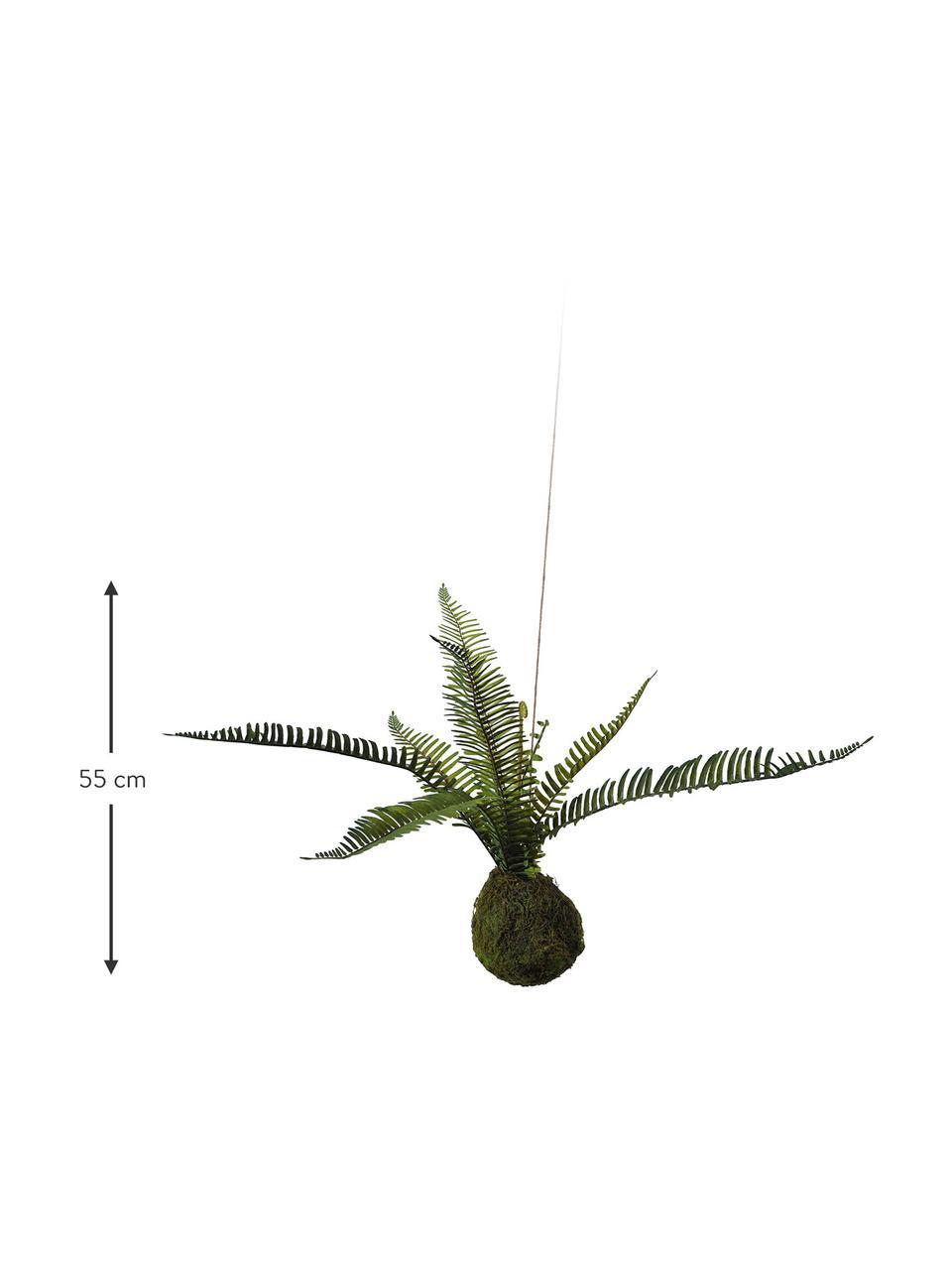 Kunstblume Farn, Kunststoff, Schaumstoff, Polyester, Wassergras, Sisal, Metall, Grün, Braun, H 55 cm